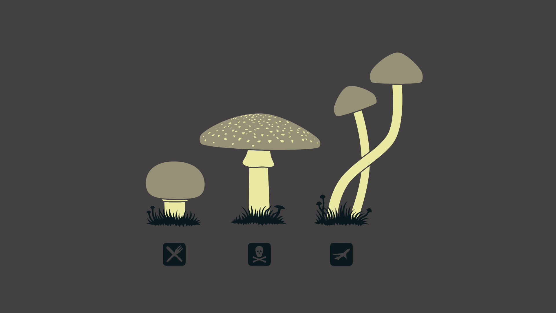 cool mushroom wallpapers