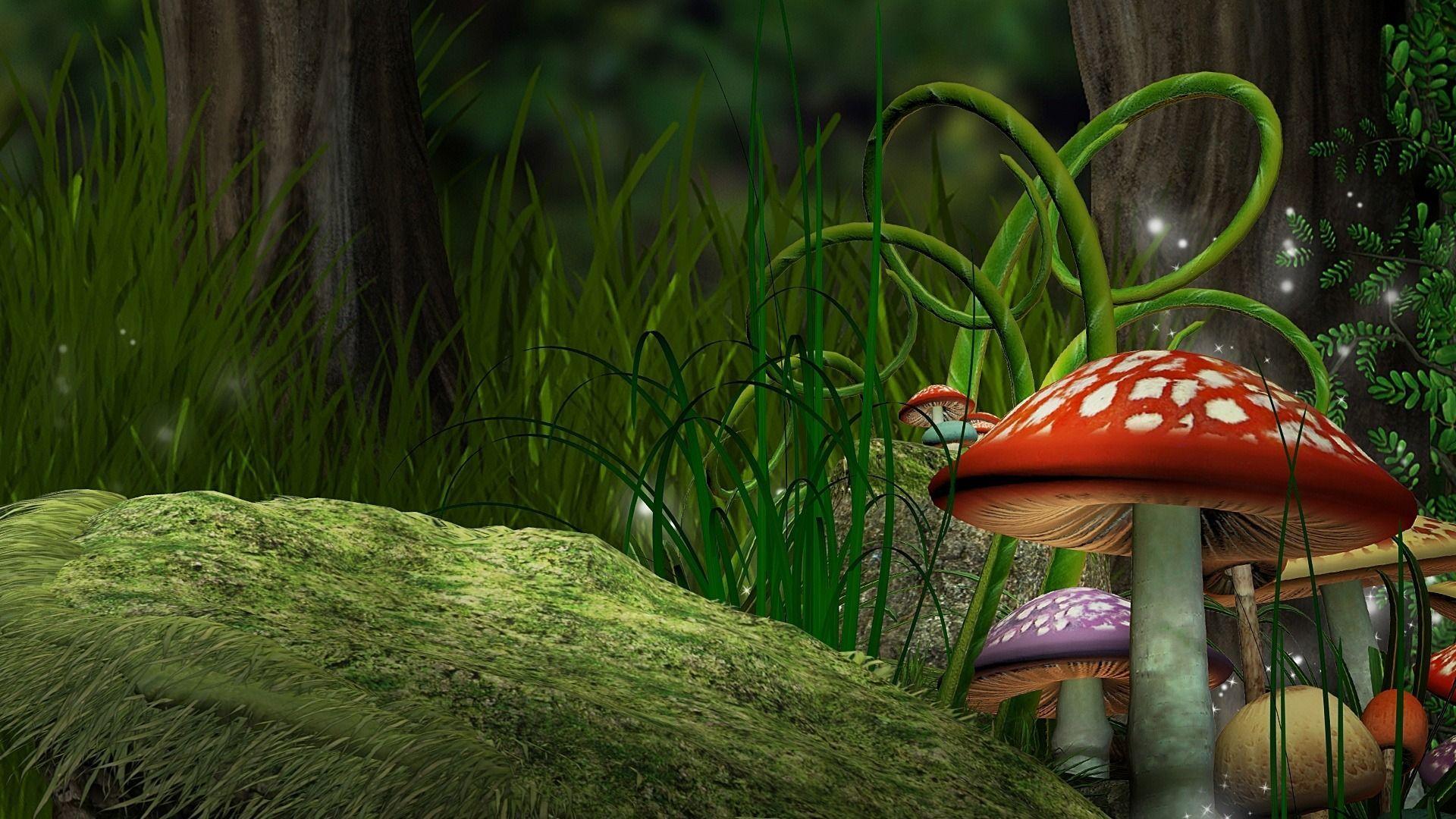 cool mushroom images hd