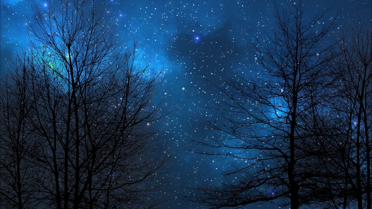 starry sky backgrounds