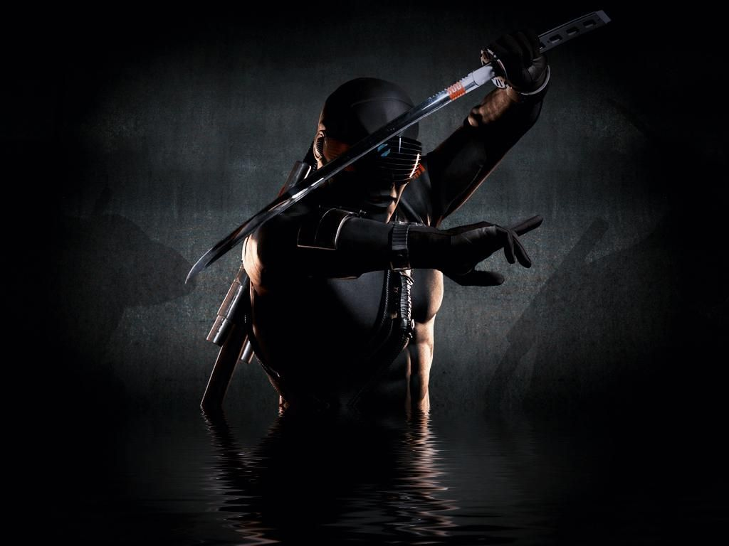 cool ninja pics