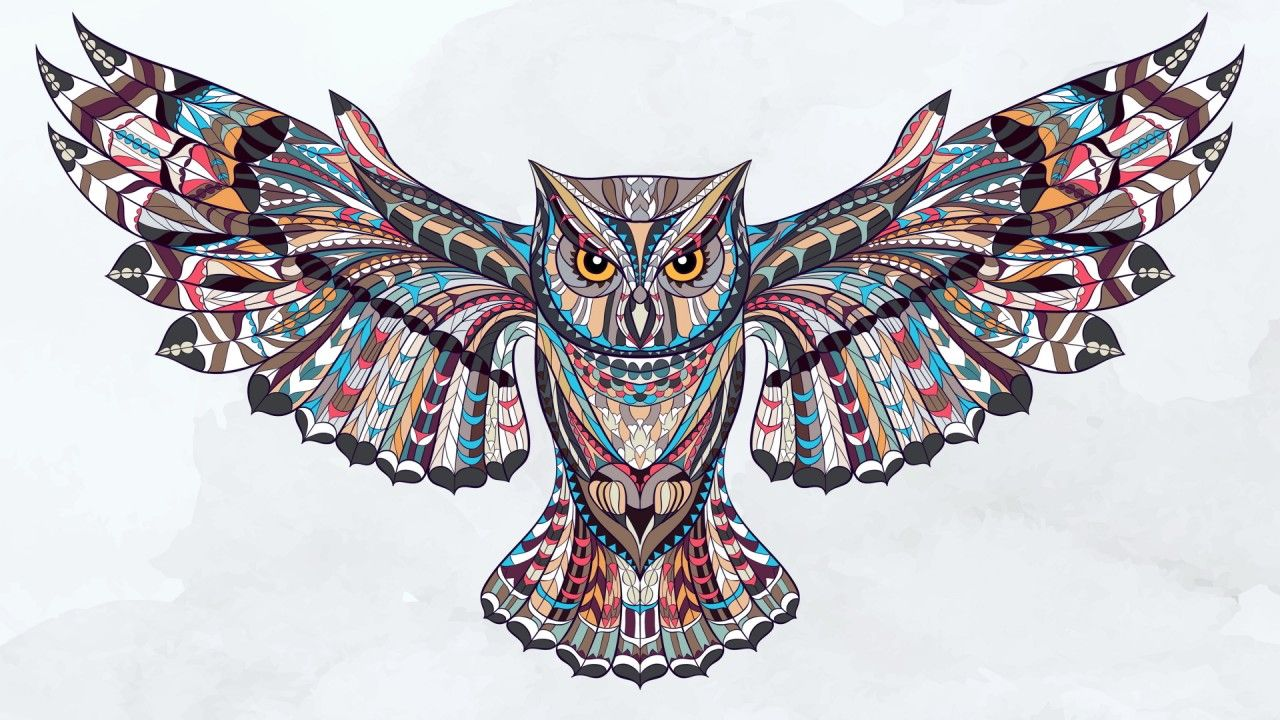 high definition owl wallpapers