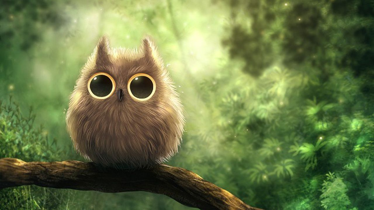 iphone owl wallpaper