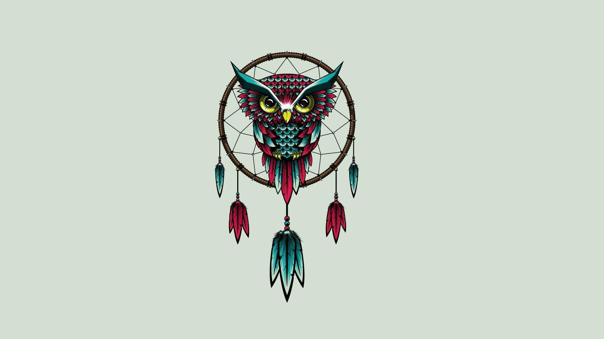 owl images download