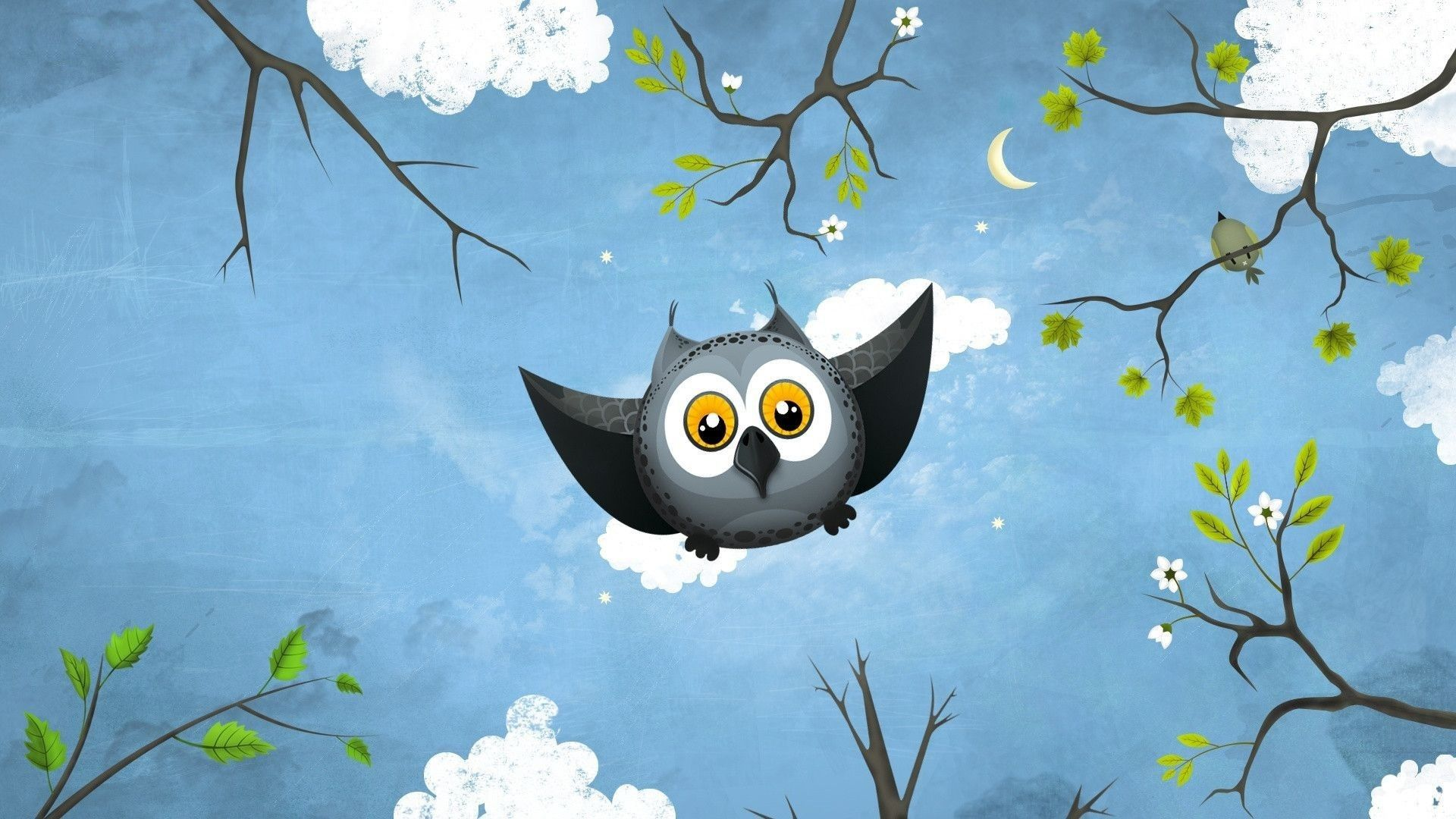 free owl wallpaper for android