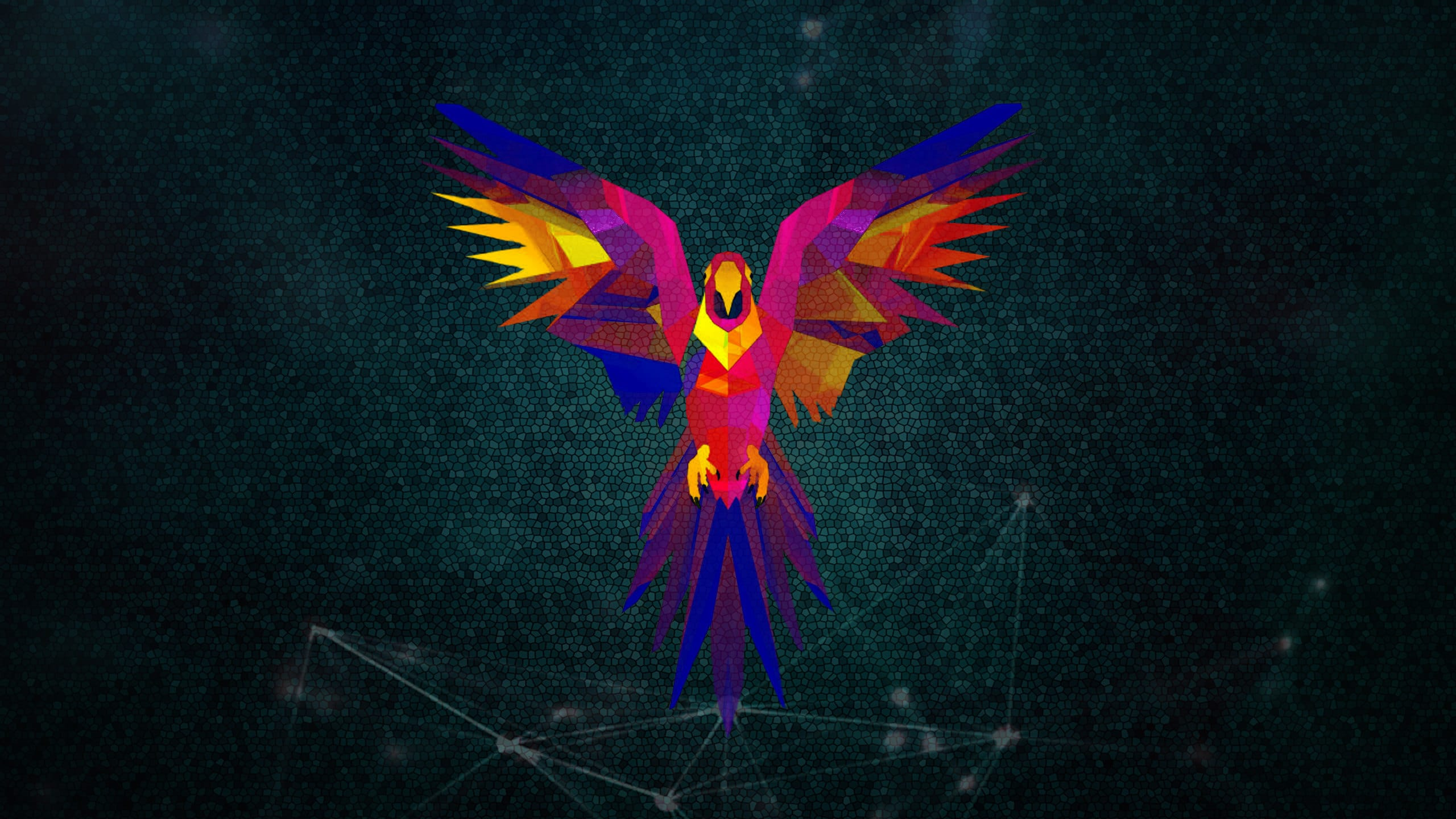 parrot images free download