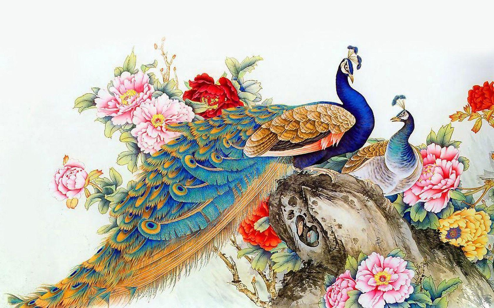 peacock wallpaper backgrounds