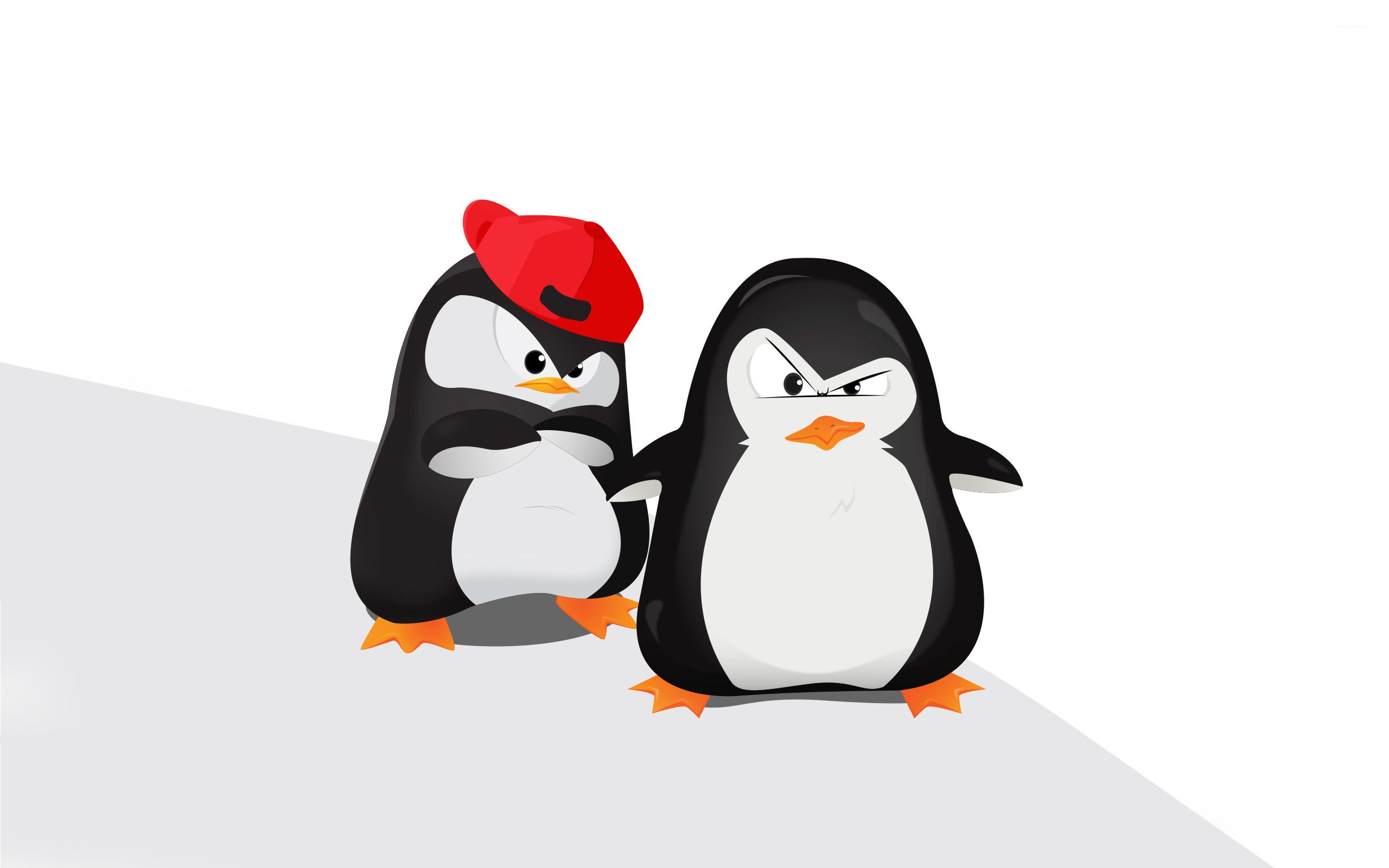 cool penguin wallpapers