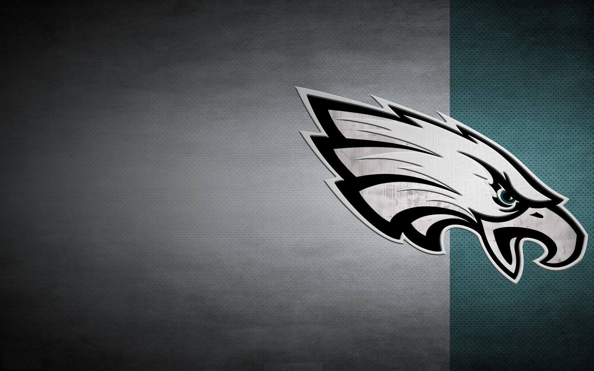 philadelphia eagles super bowl wallpaper