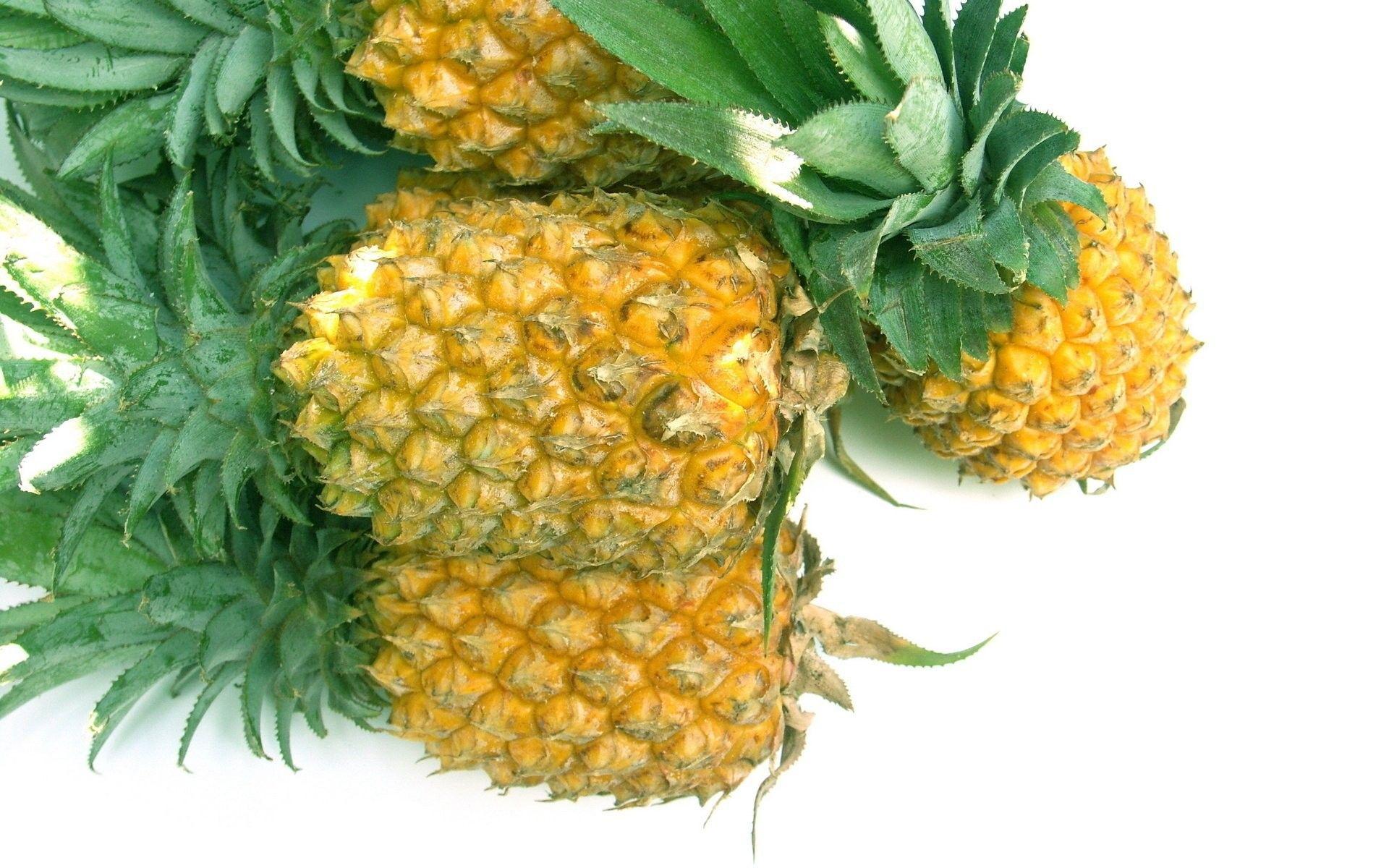 pineapple photograph