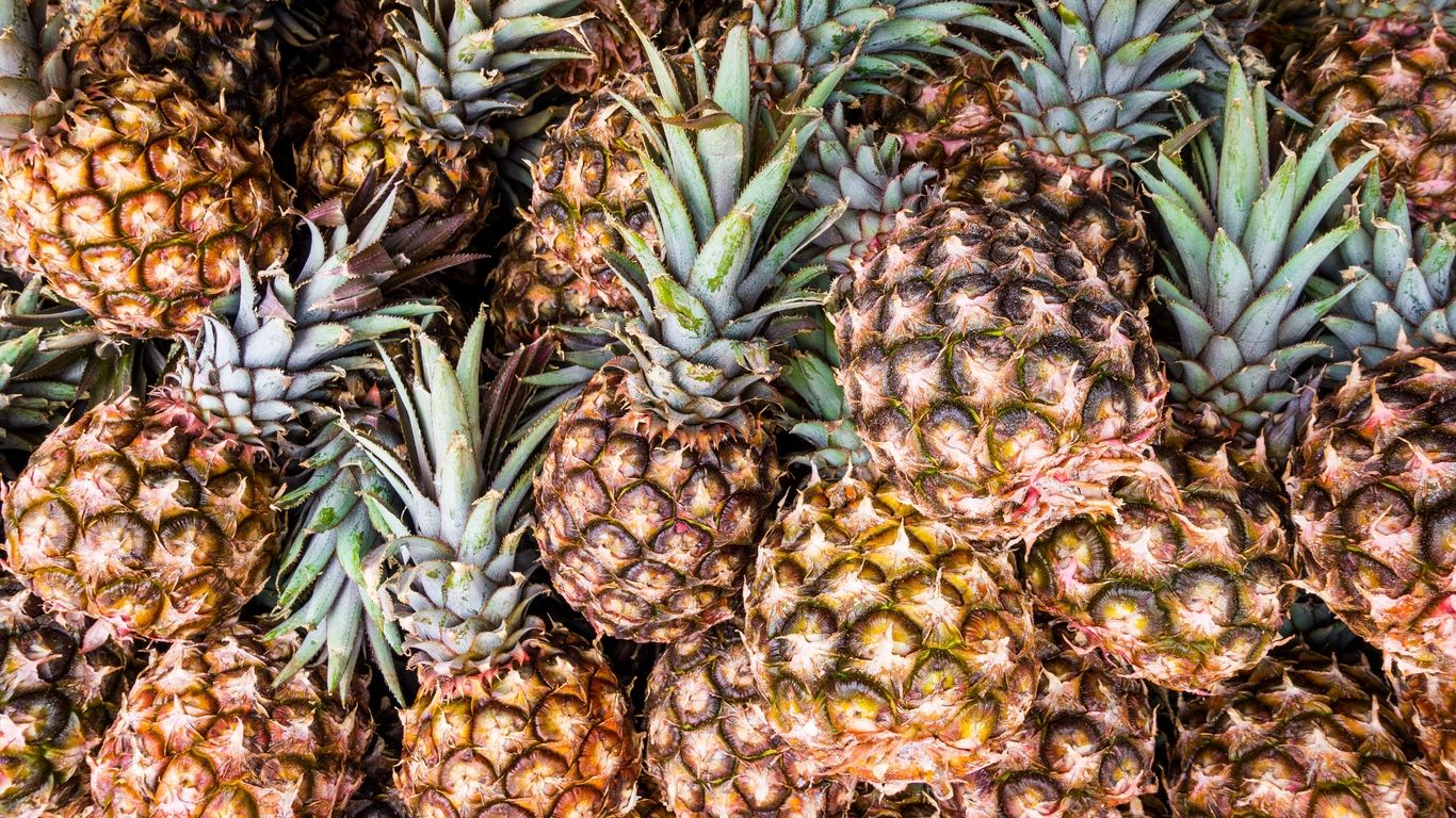 pineapple desktop background