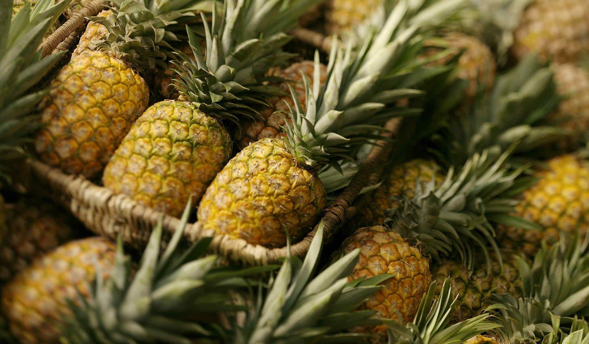 pineapple wallpaper for computer