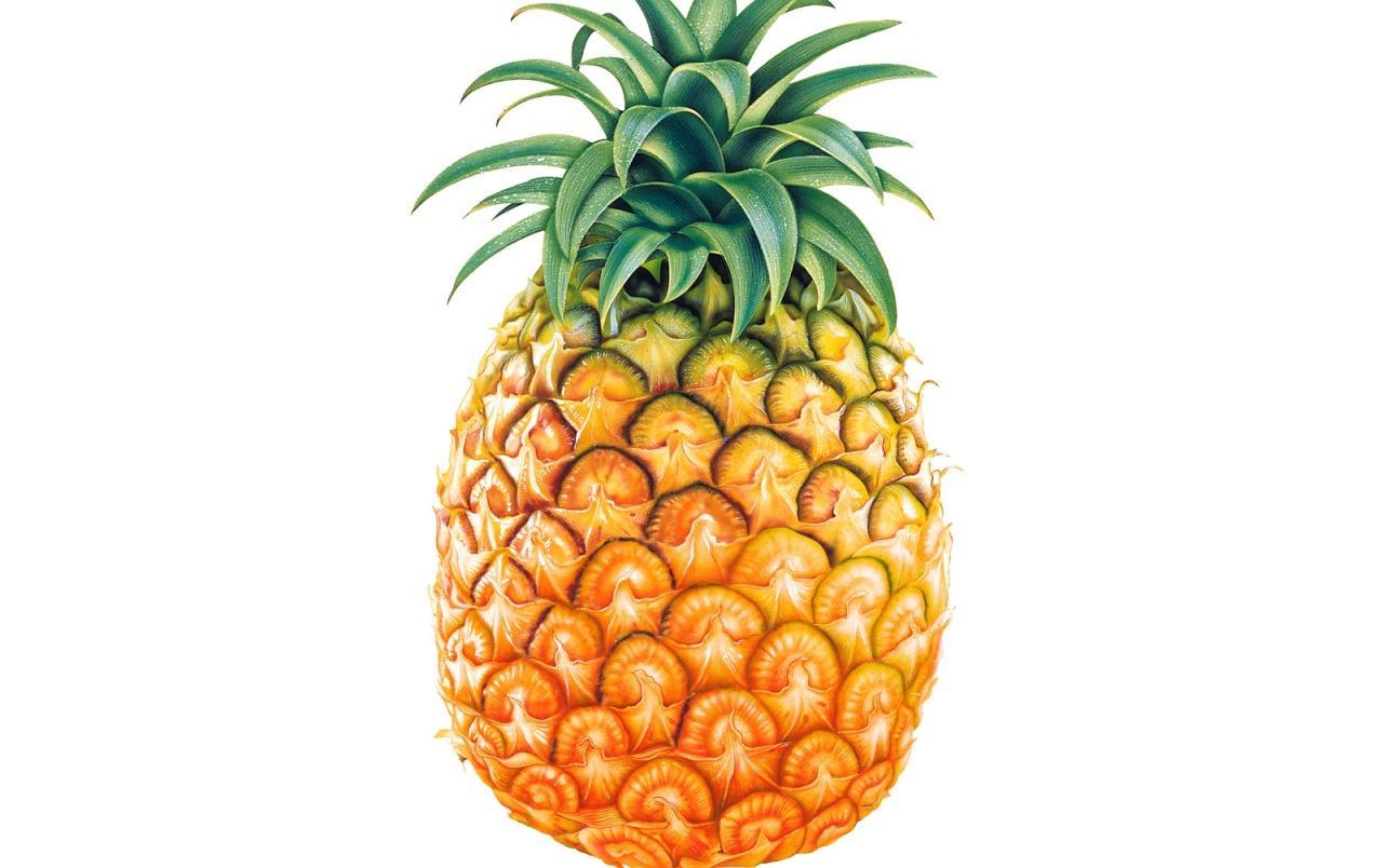 pineapple desktop backgrounds