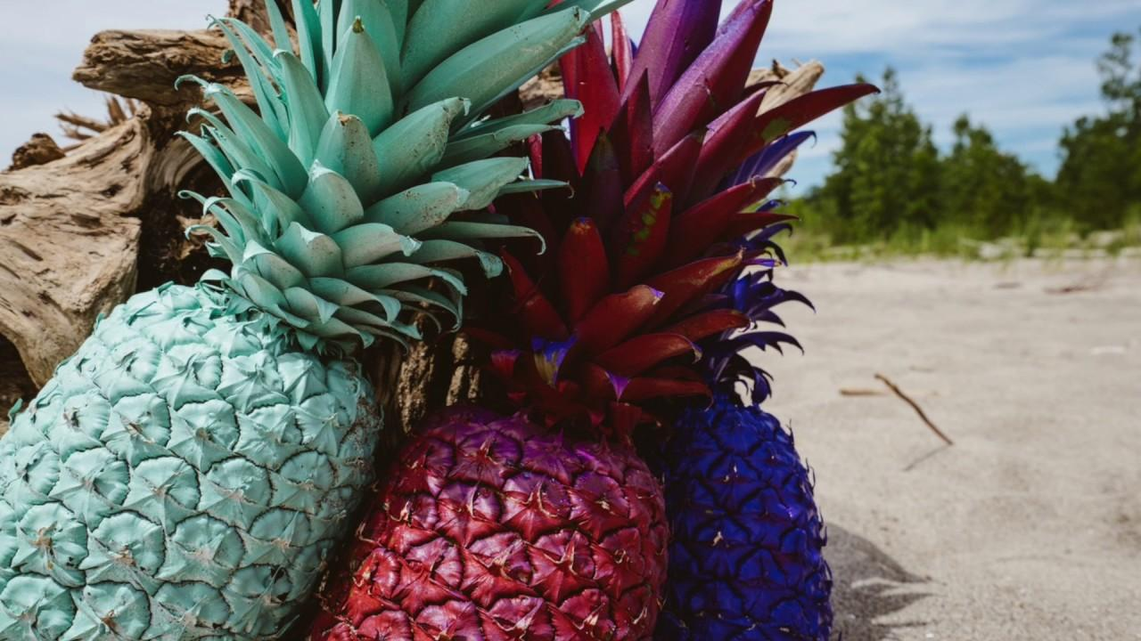 pineapple plants images