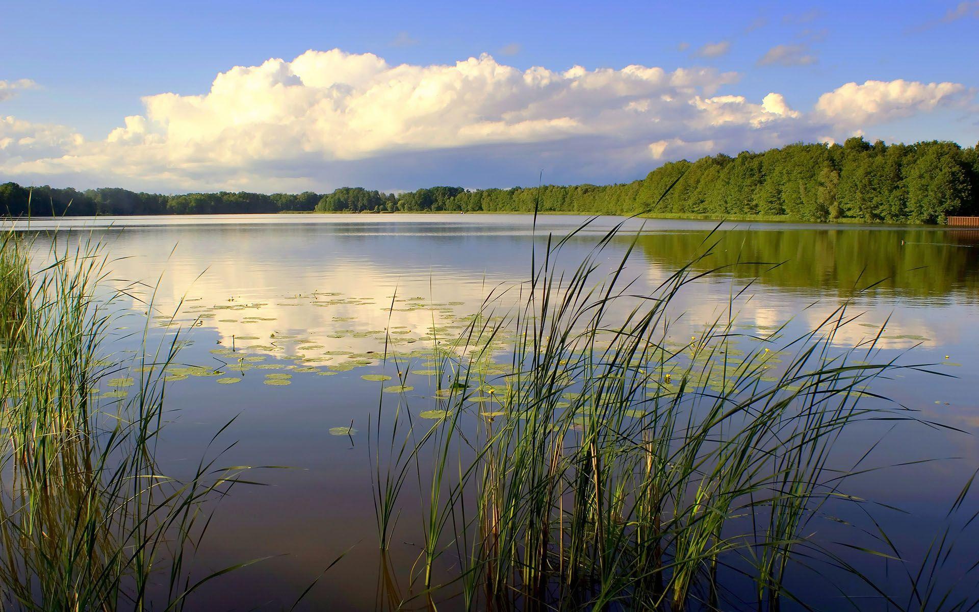ponds images hd