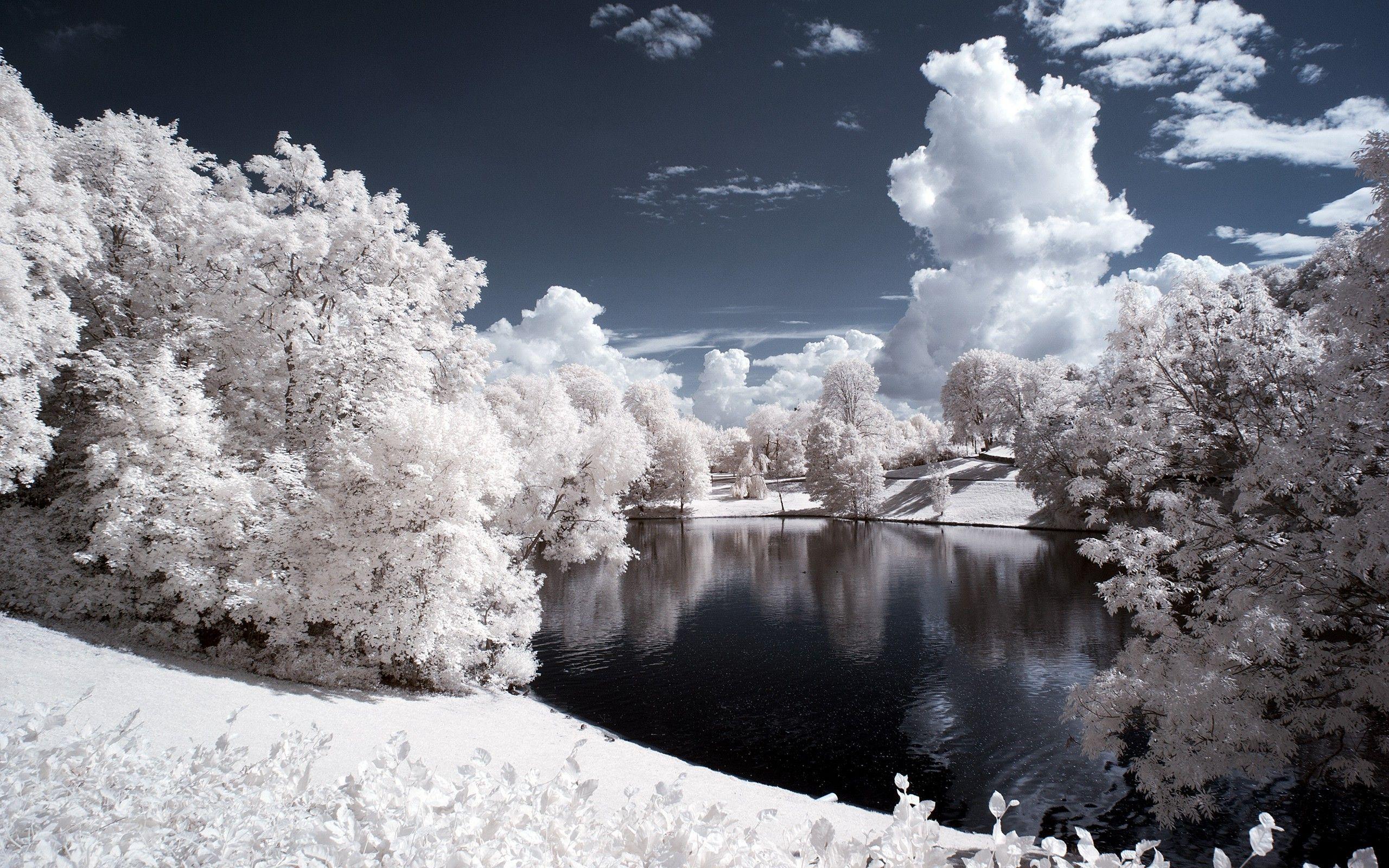 pond landscape pictures