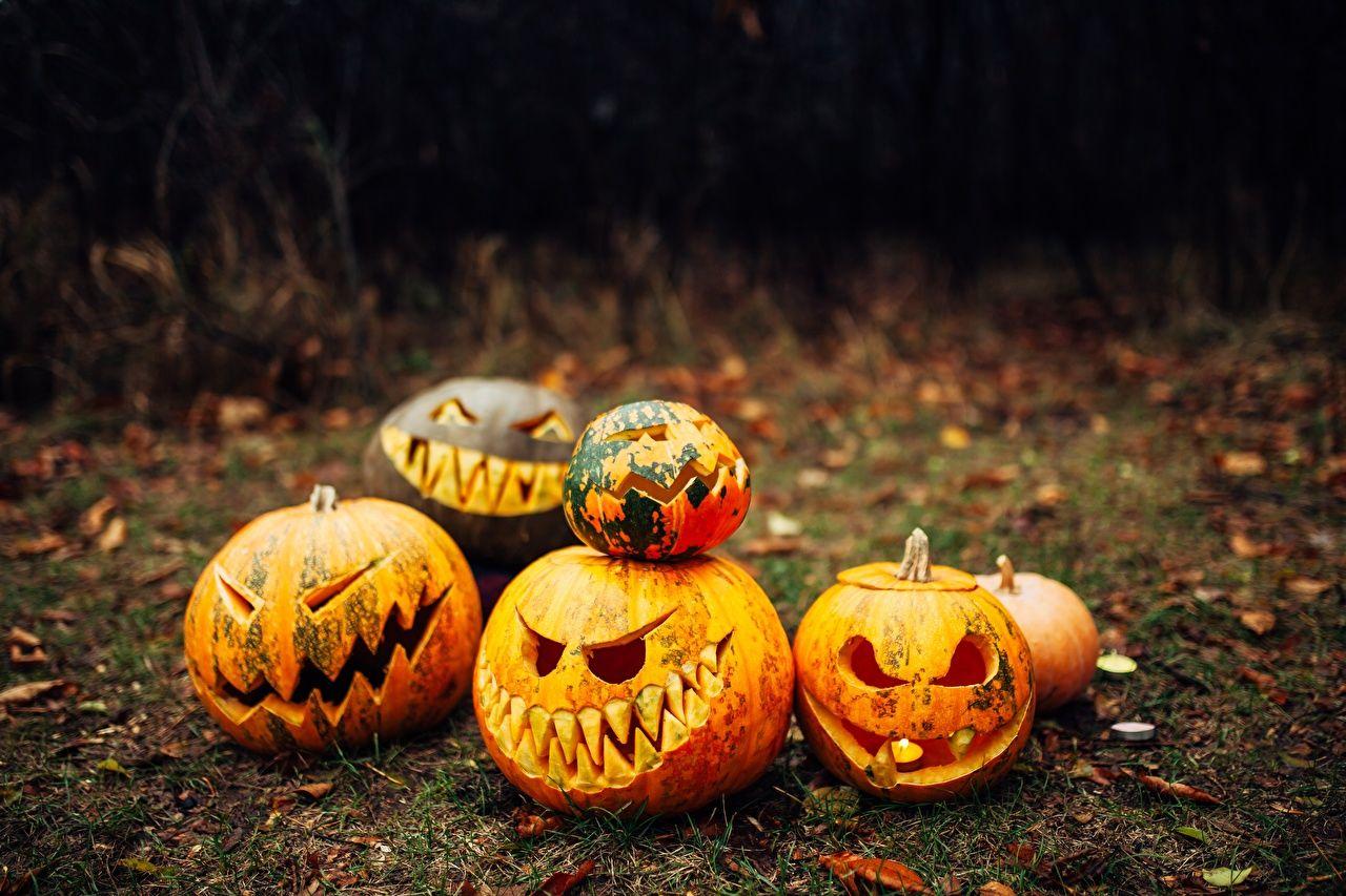 halloween pumpkins wallpapers
