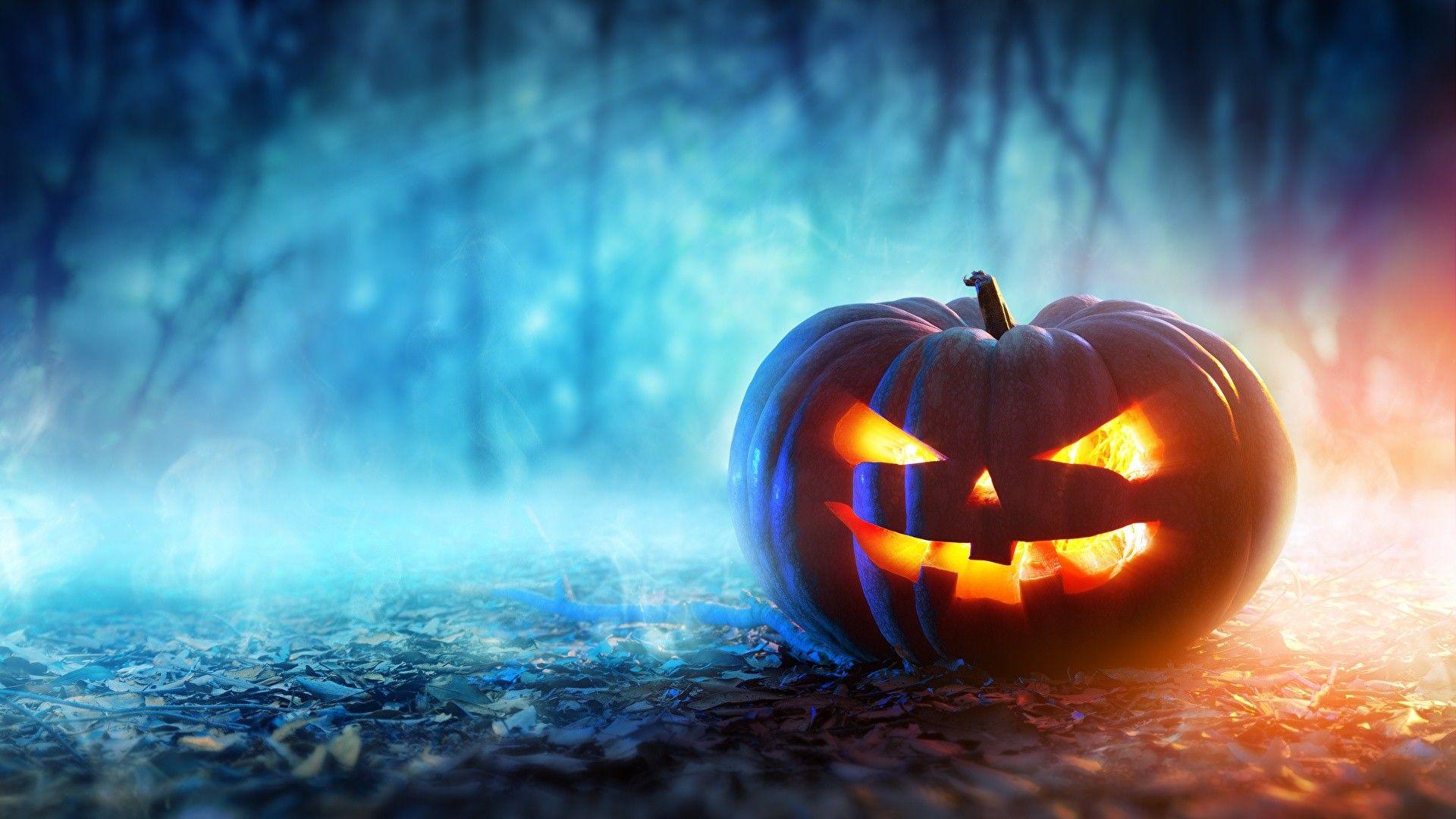 pumpkin desktop background