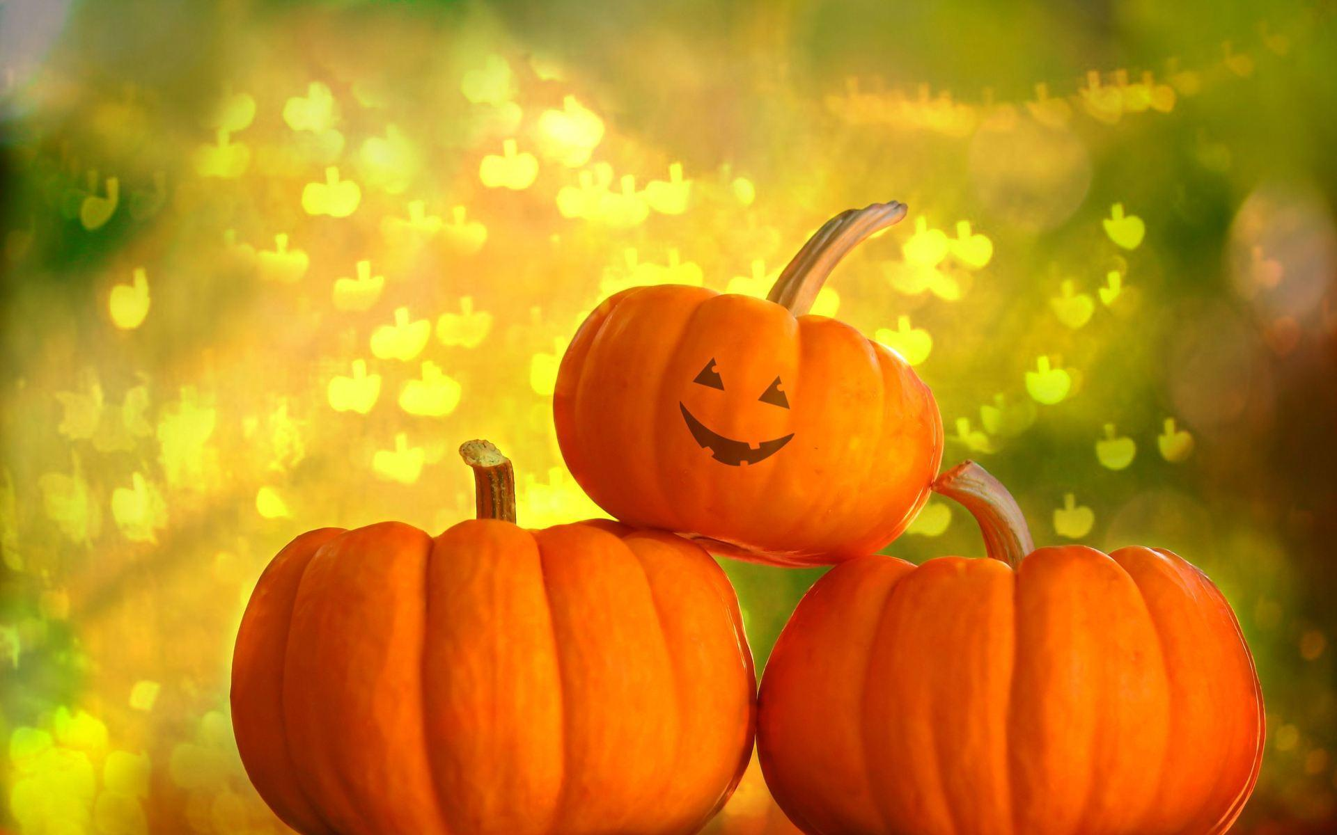 aesthetic pumpkin wallpaper