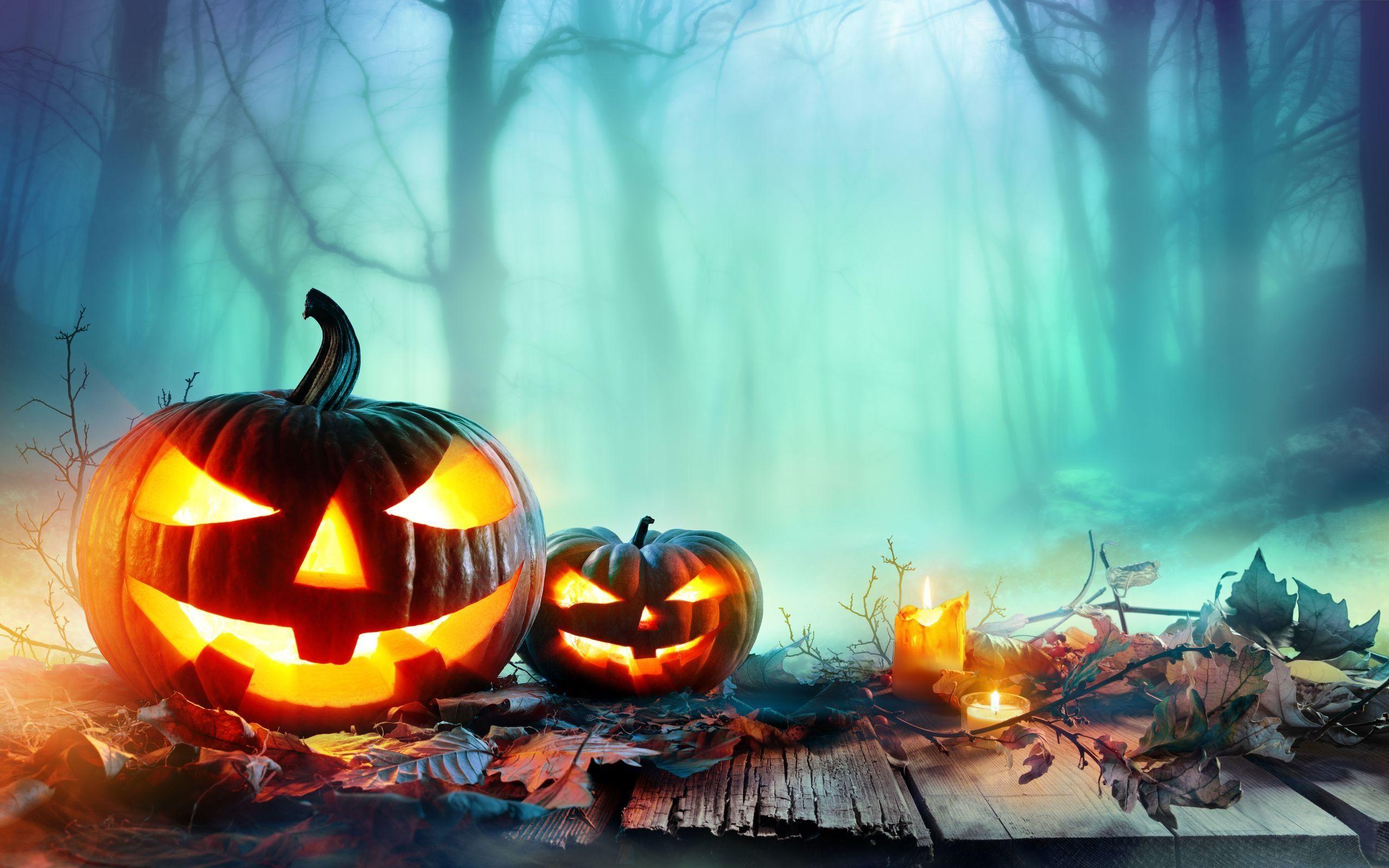 pumpkin wallpaper cute