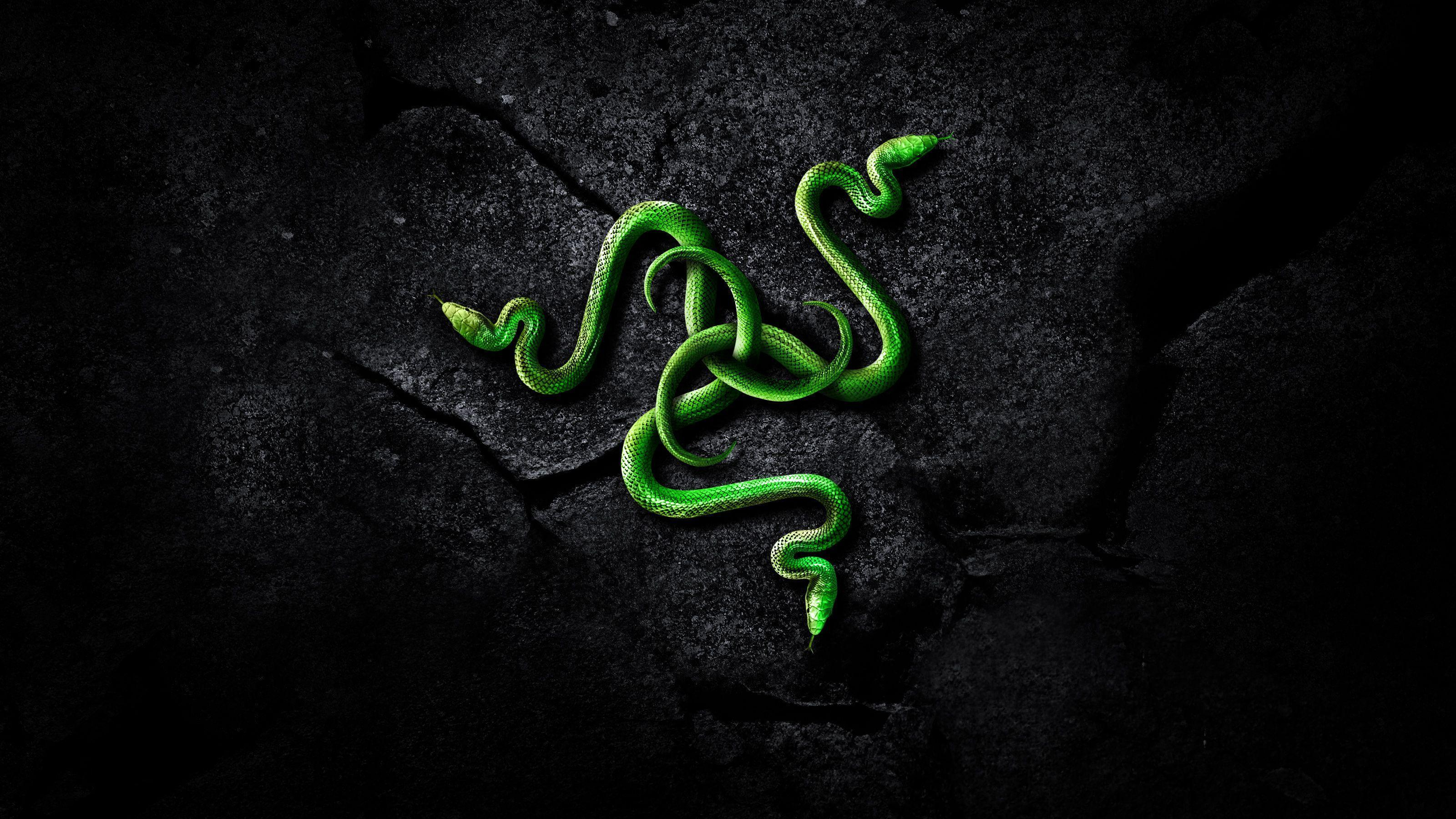 razer rainbow wallpaper