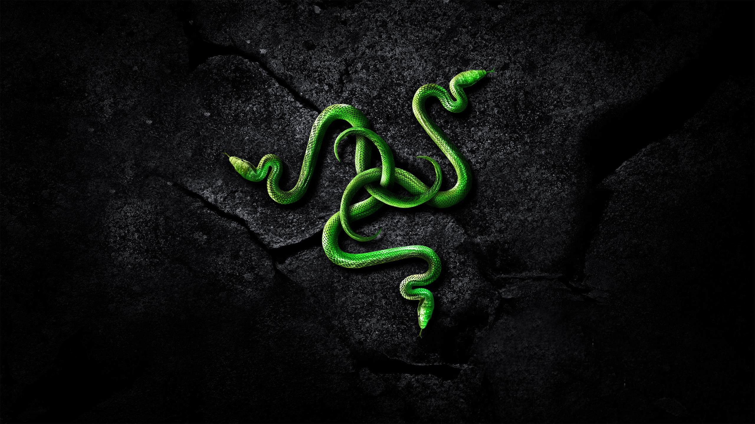 razer chroma download