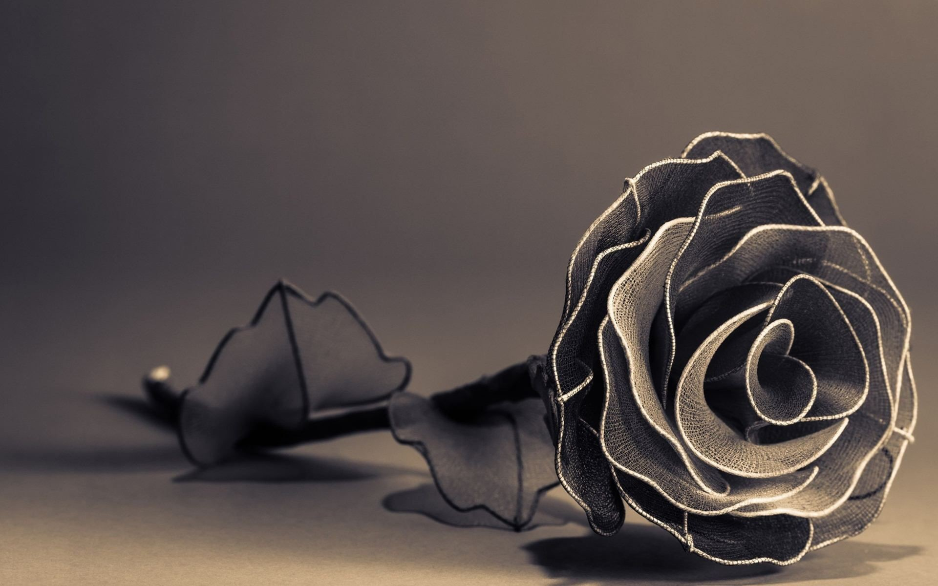 red roses wallpapers for mobile