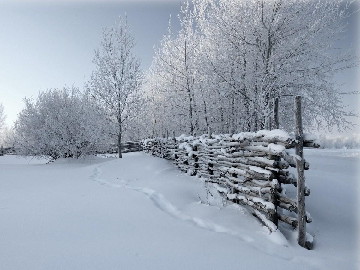 hd snowfall