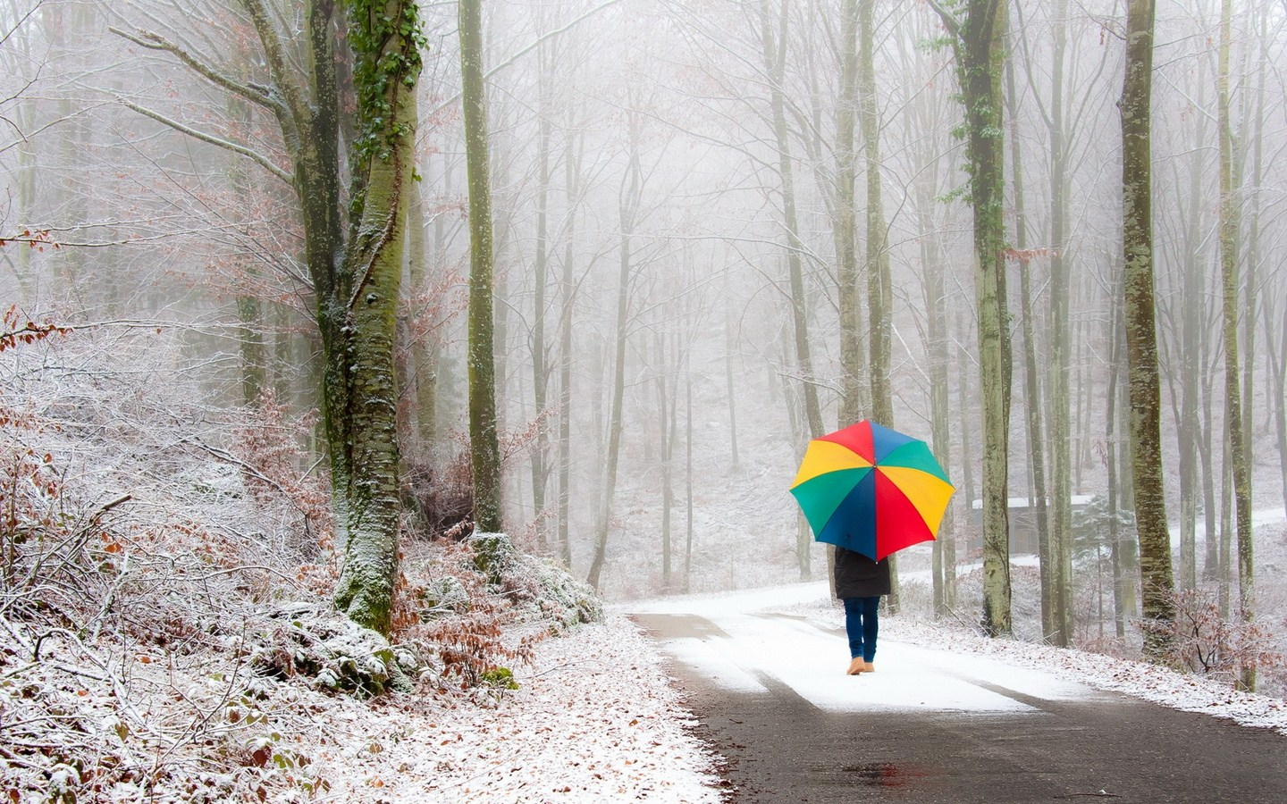 hd snowing wallpapers
