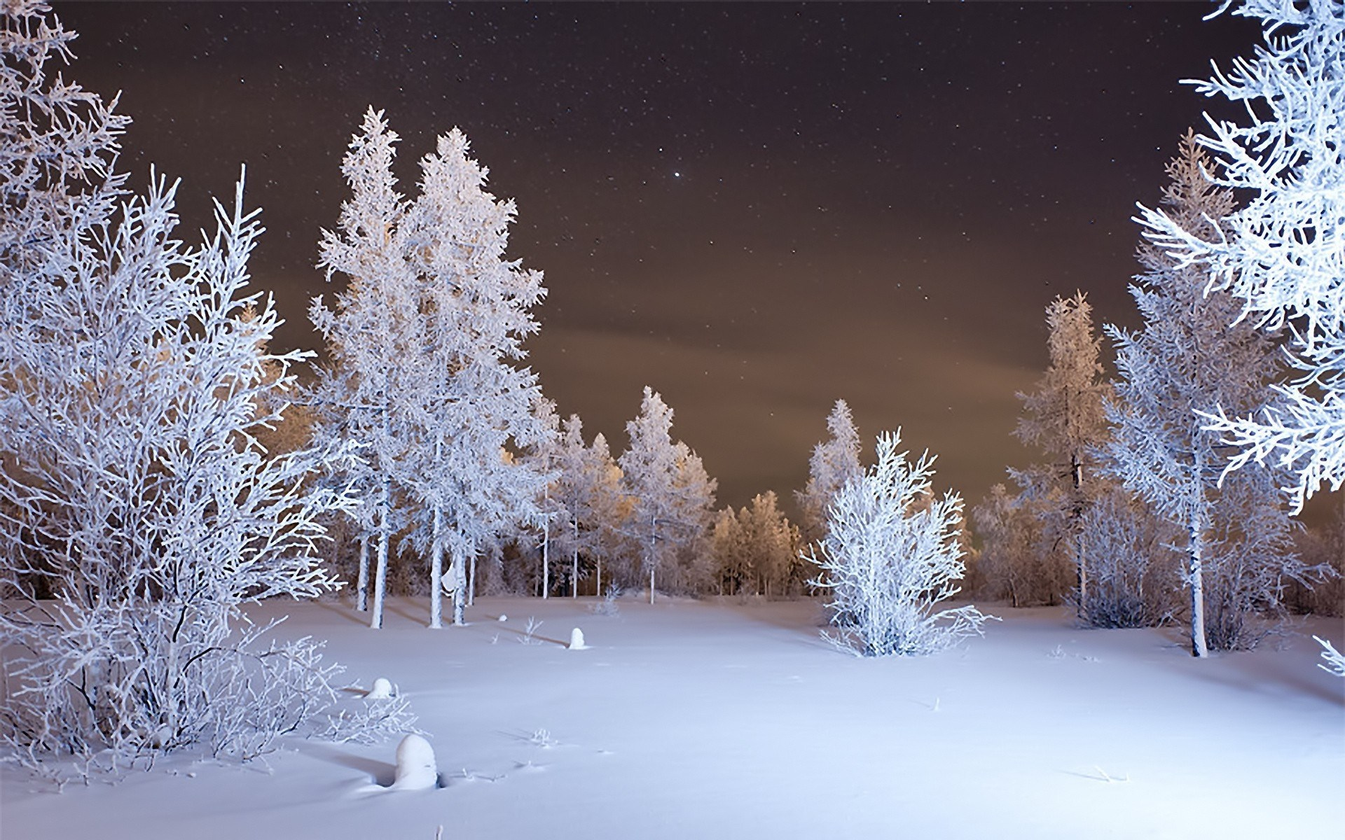 snow falling wallpapers