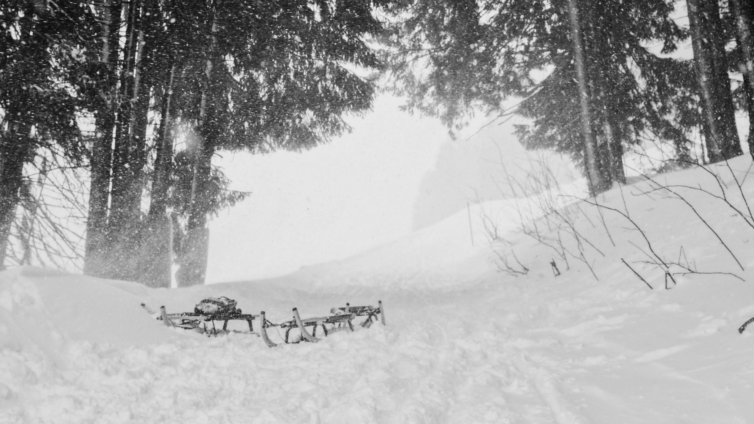 pics of snowfall