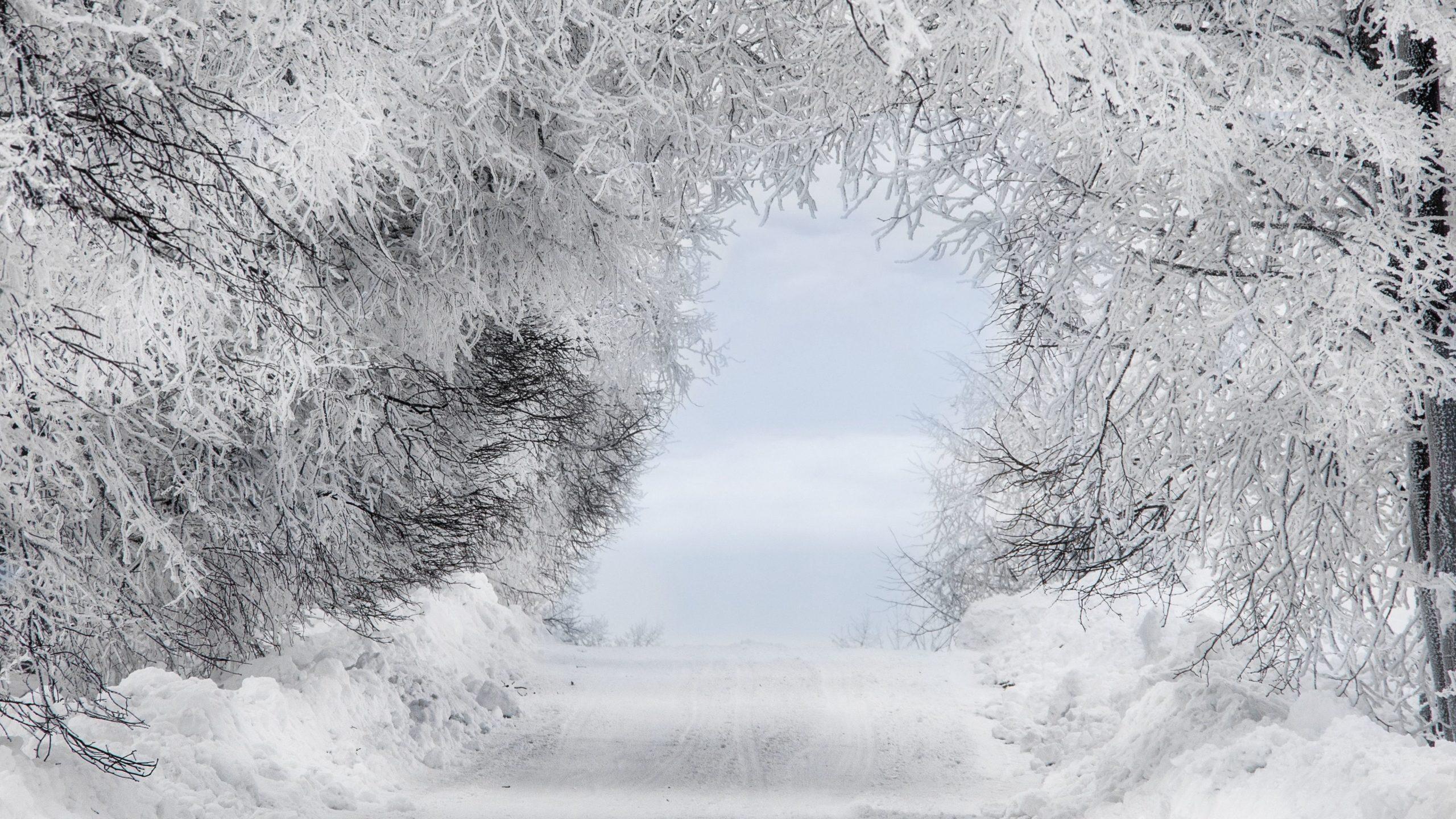 desktop wallpaper snow