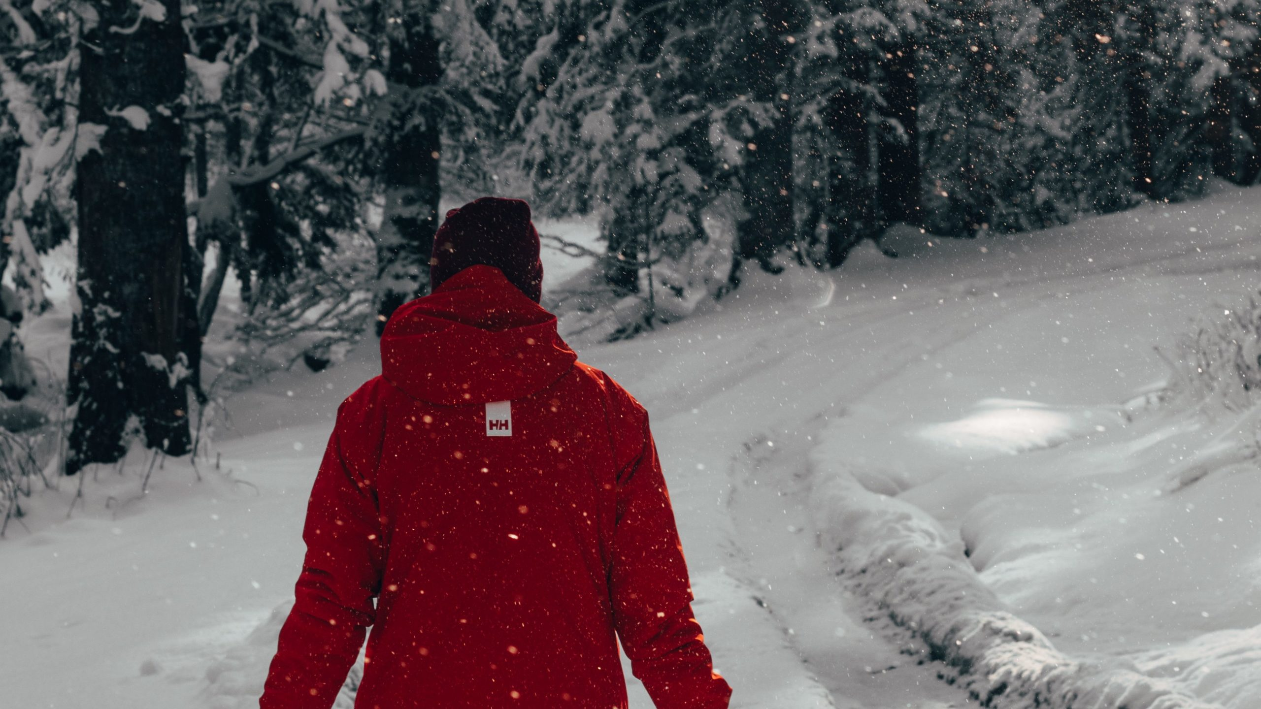 a picture of snow