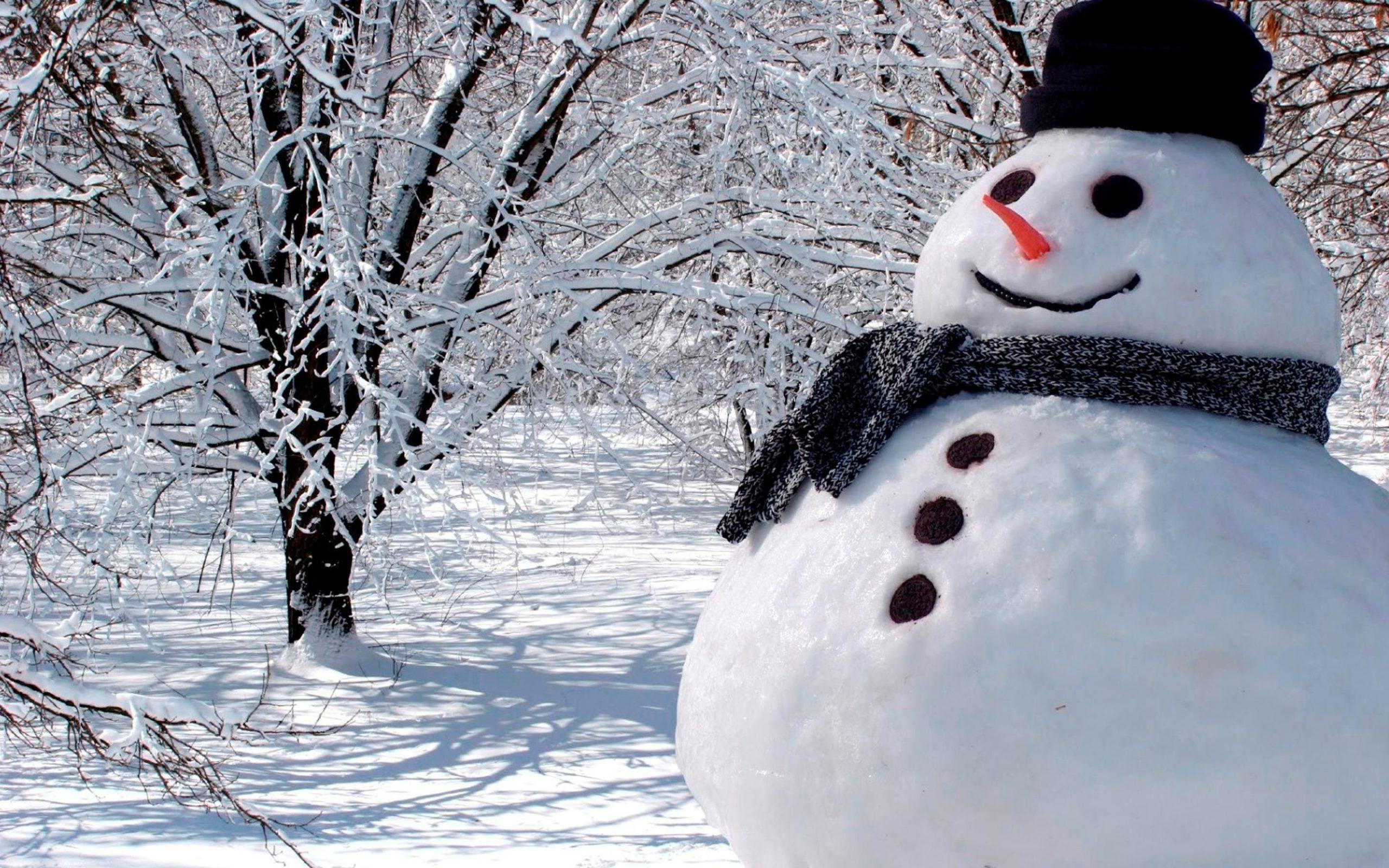 free snowman images 4k