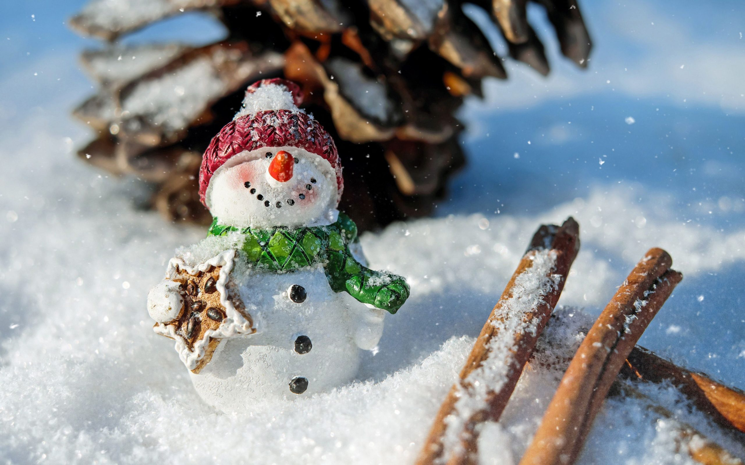 cool snowman pictures