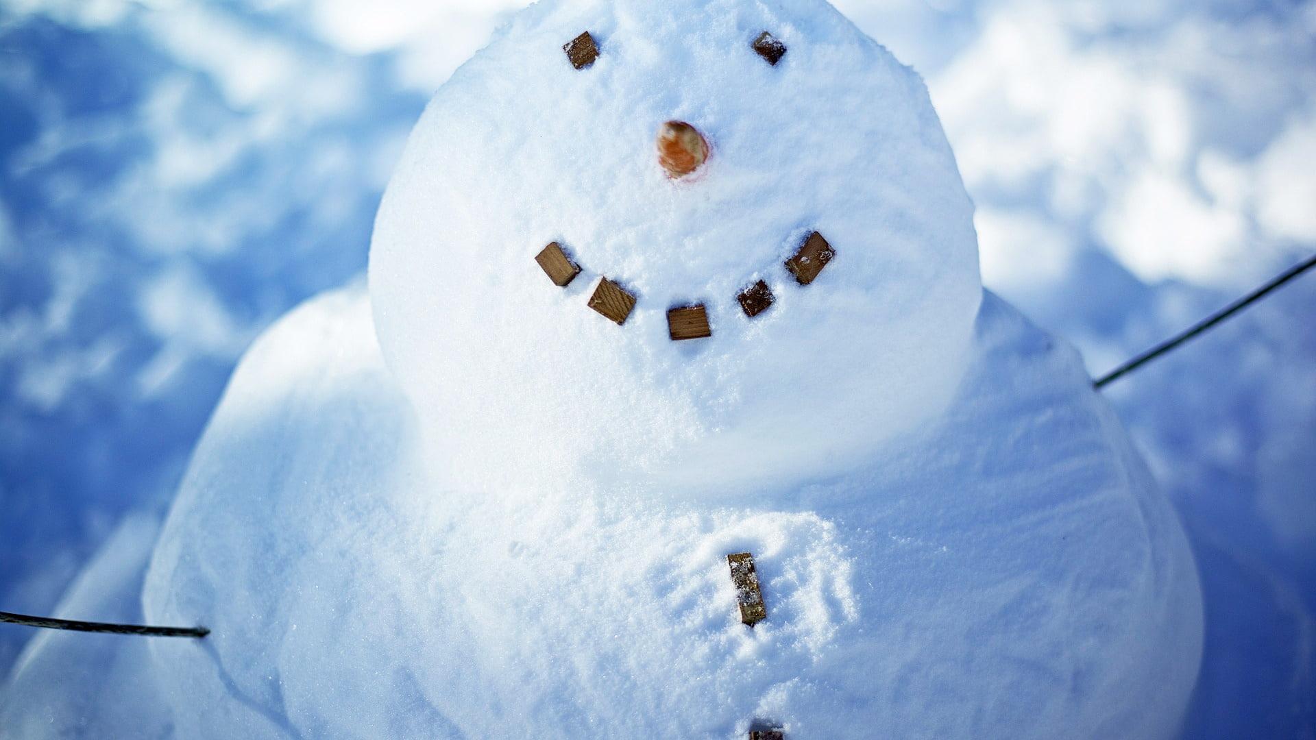 fotos de snowman