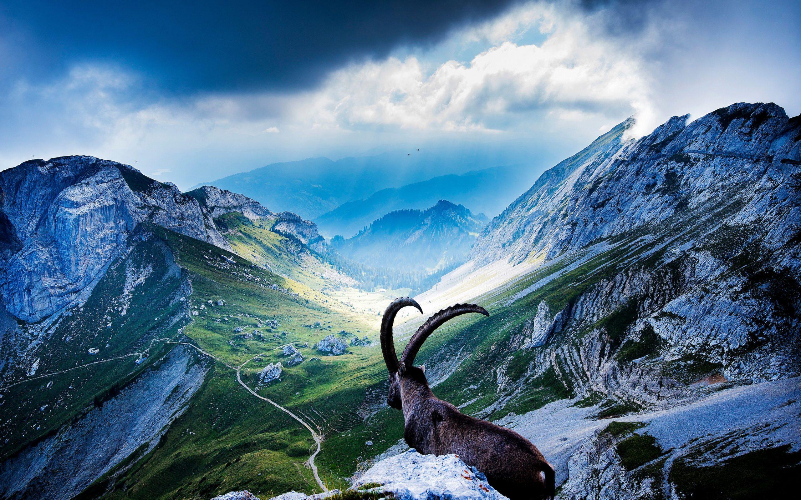 beautiful pictures of switzerland
