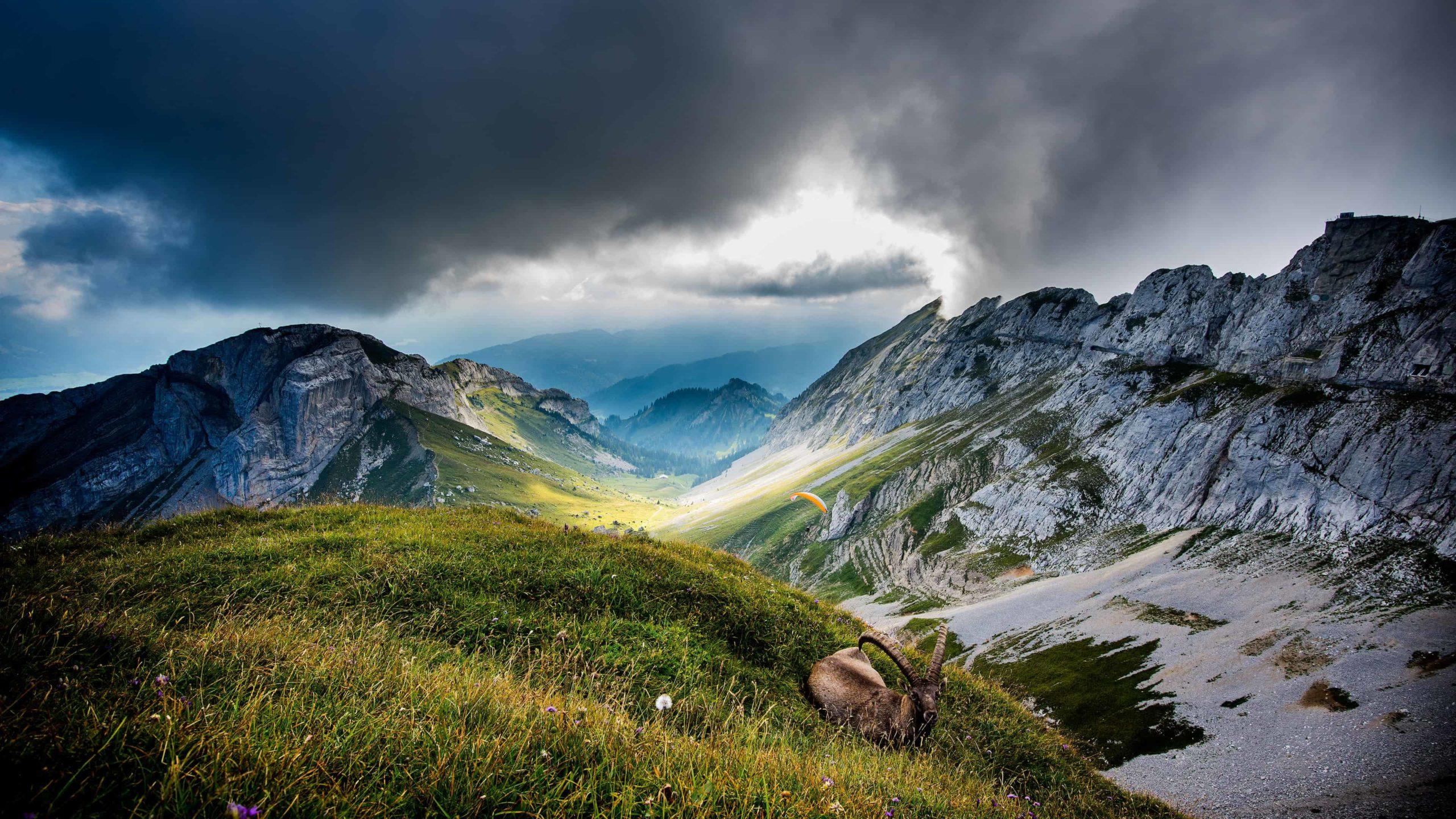 switzerland background pictures