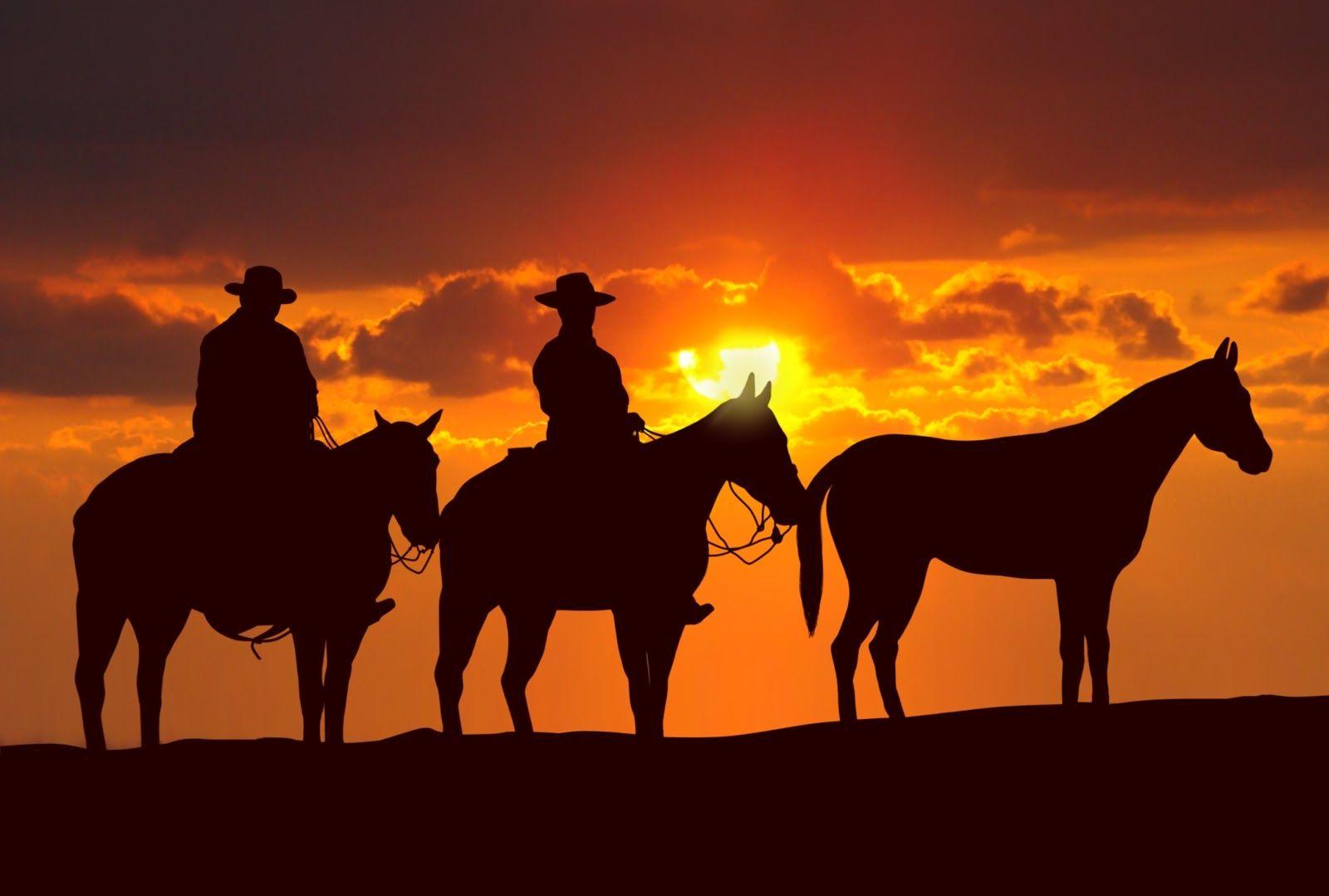 texas longhorns iphone wallpaper, dallas texas wallpaper