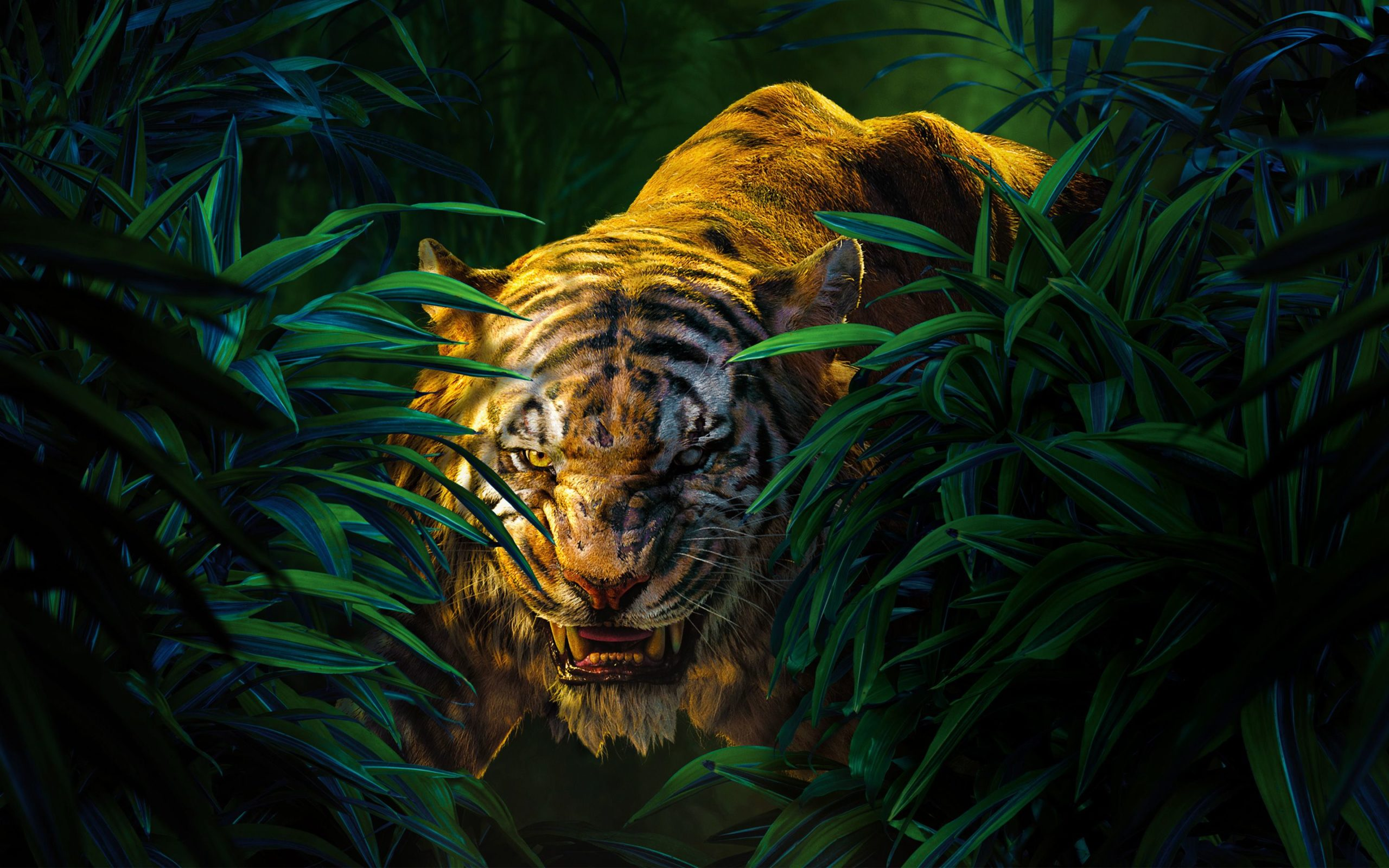 tiger animal images