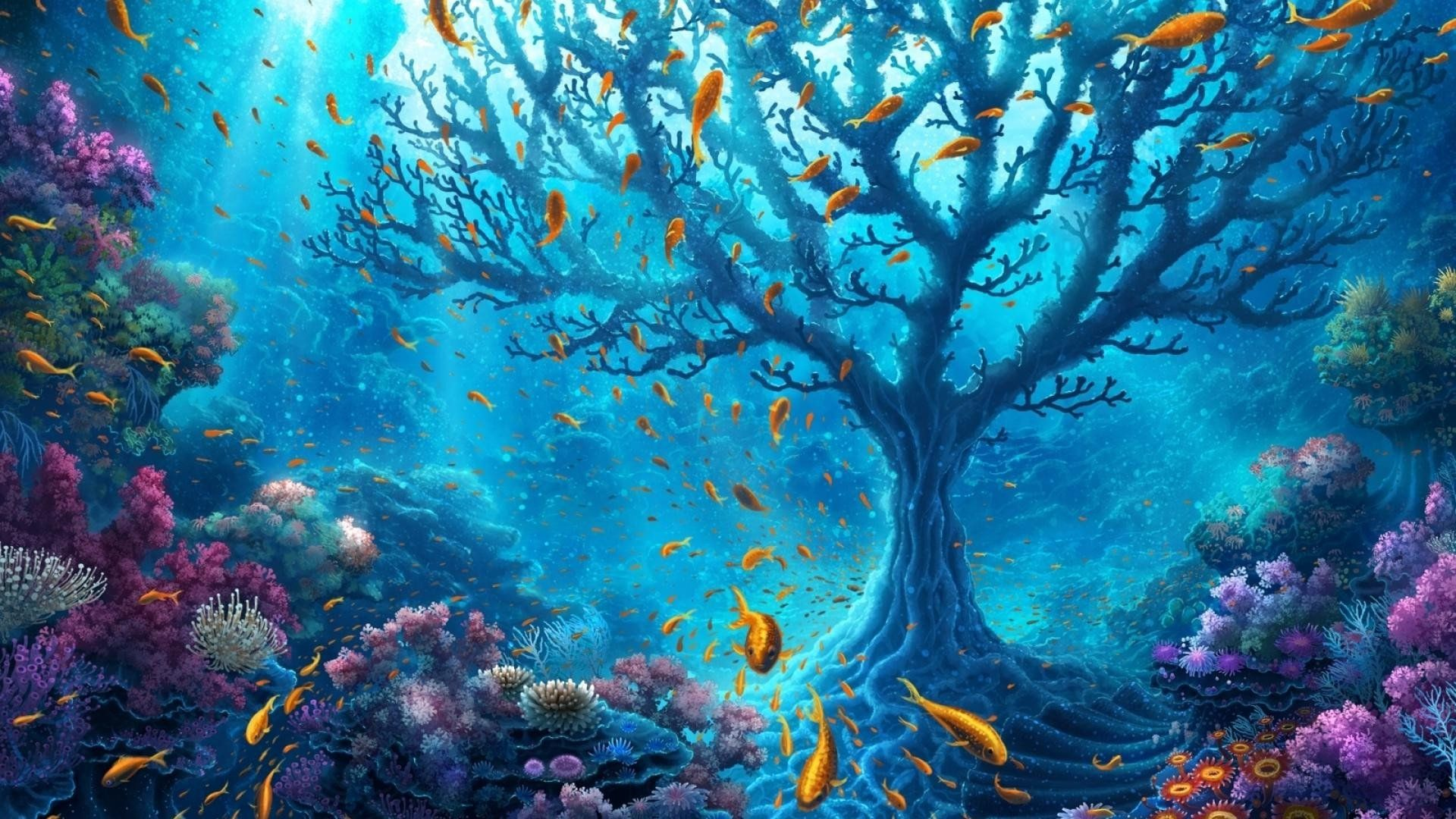underwater wallpaper hd