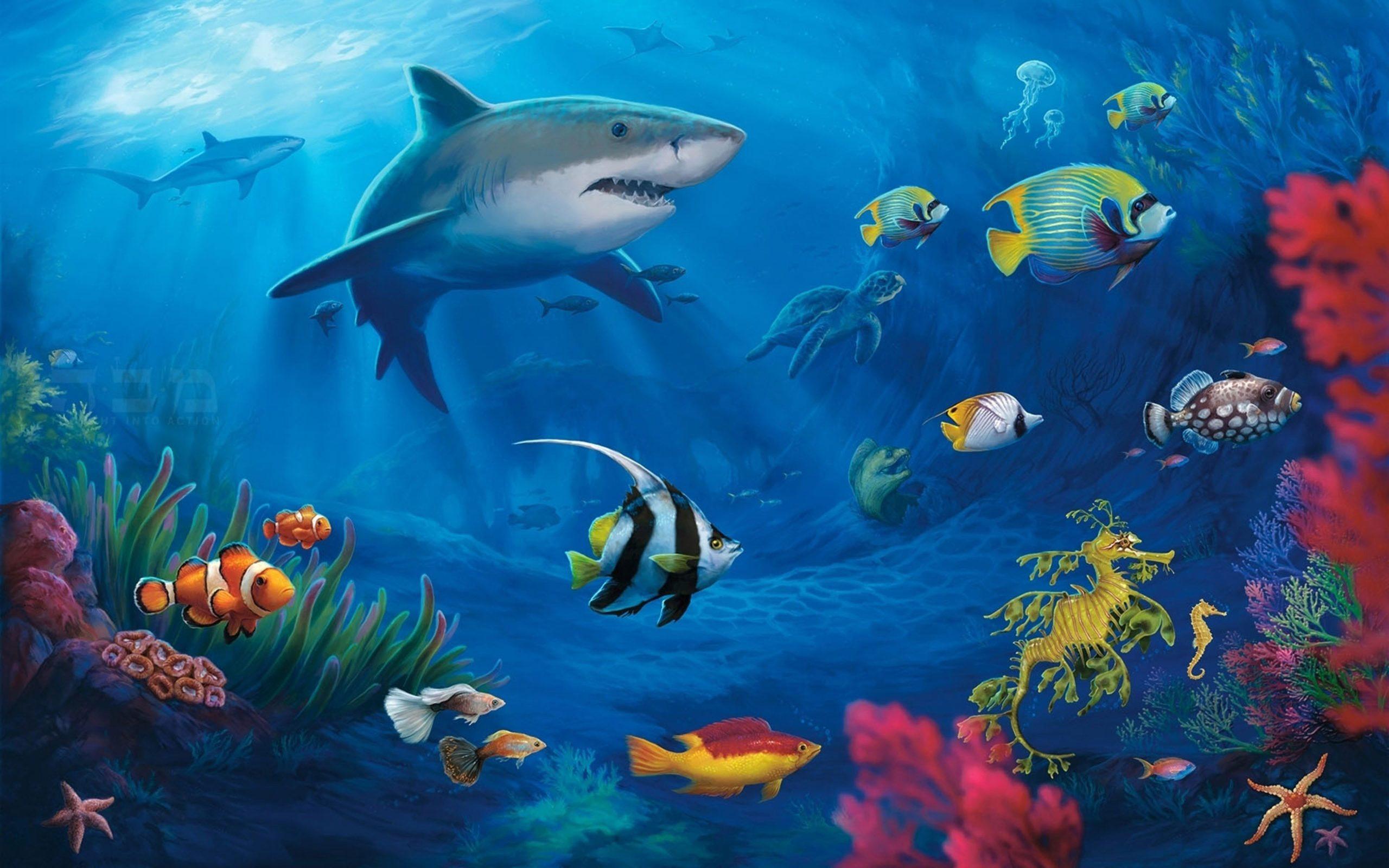 real underwater ocean background