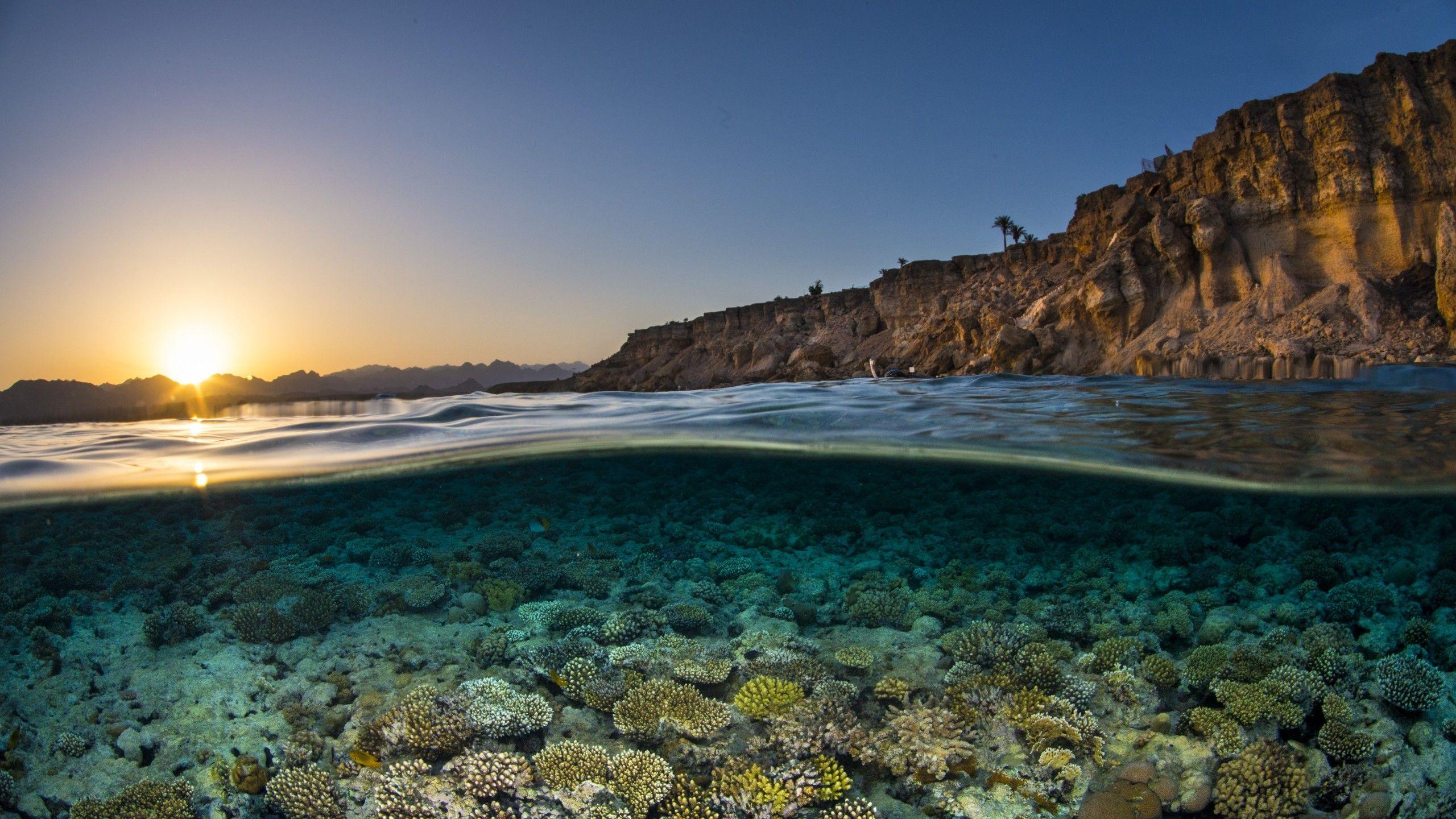 free underwater images