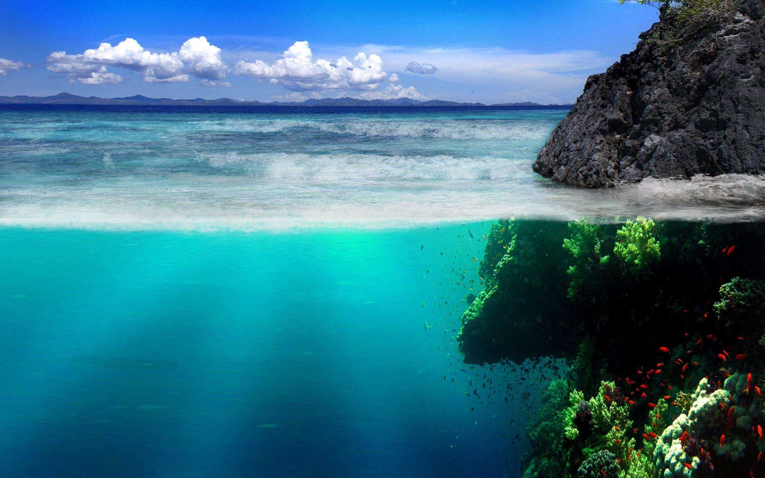 ocean pictures underwater