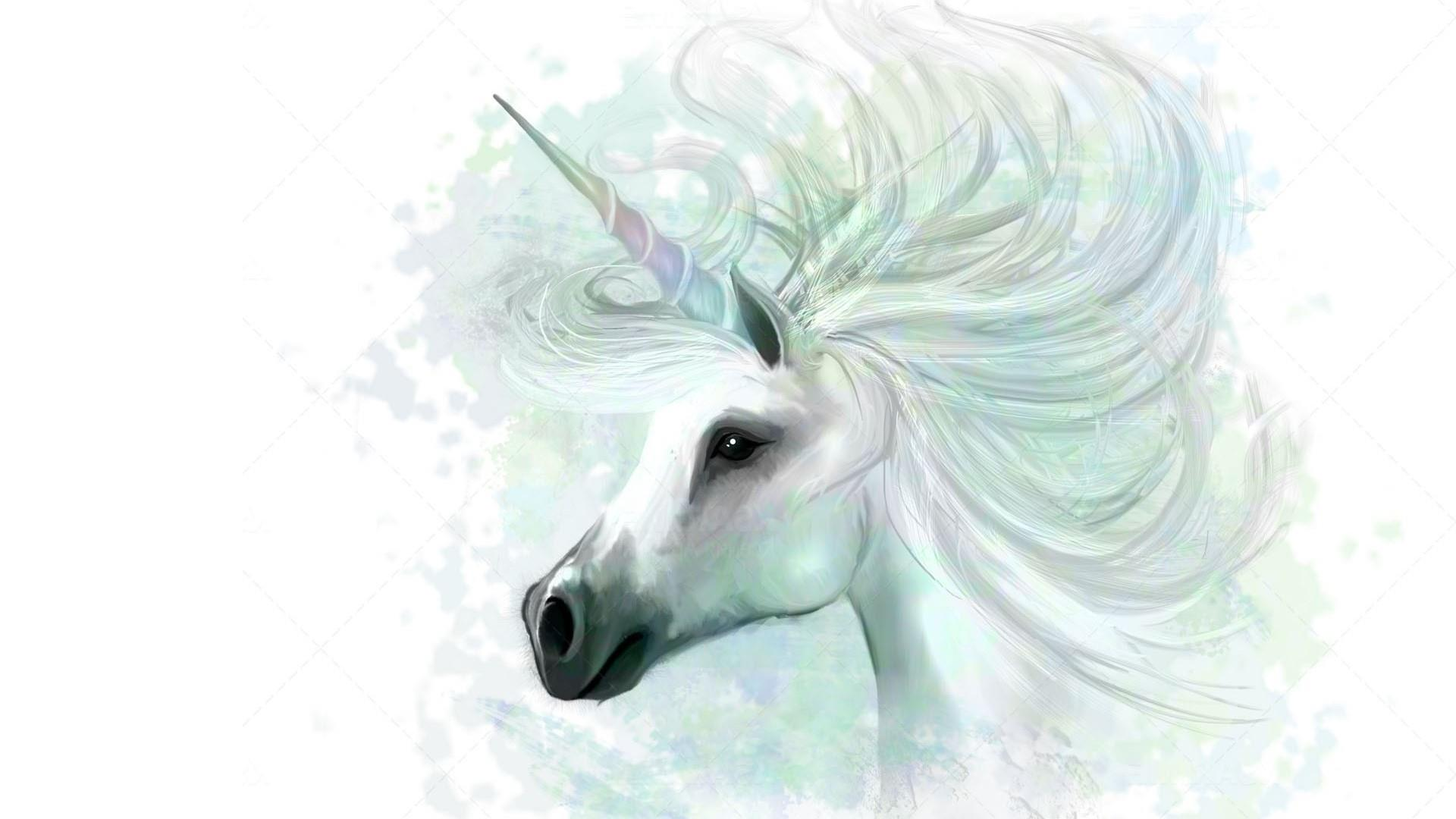 unicorn desktop background