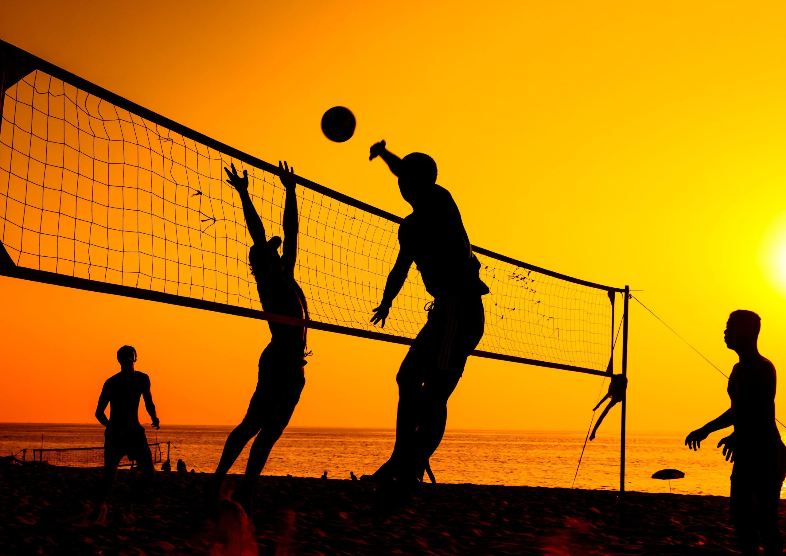 volleyball images hd