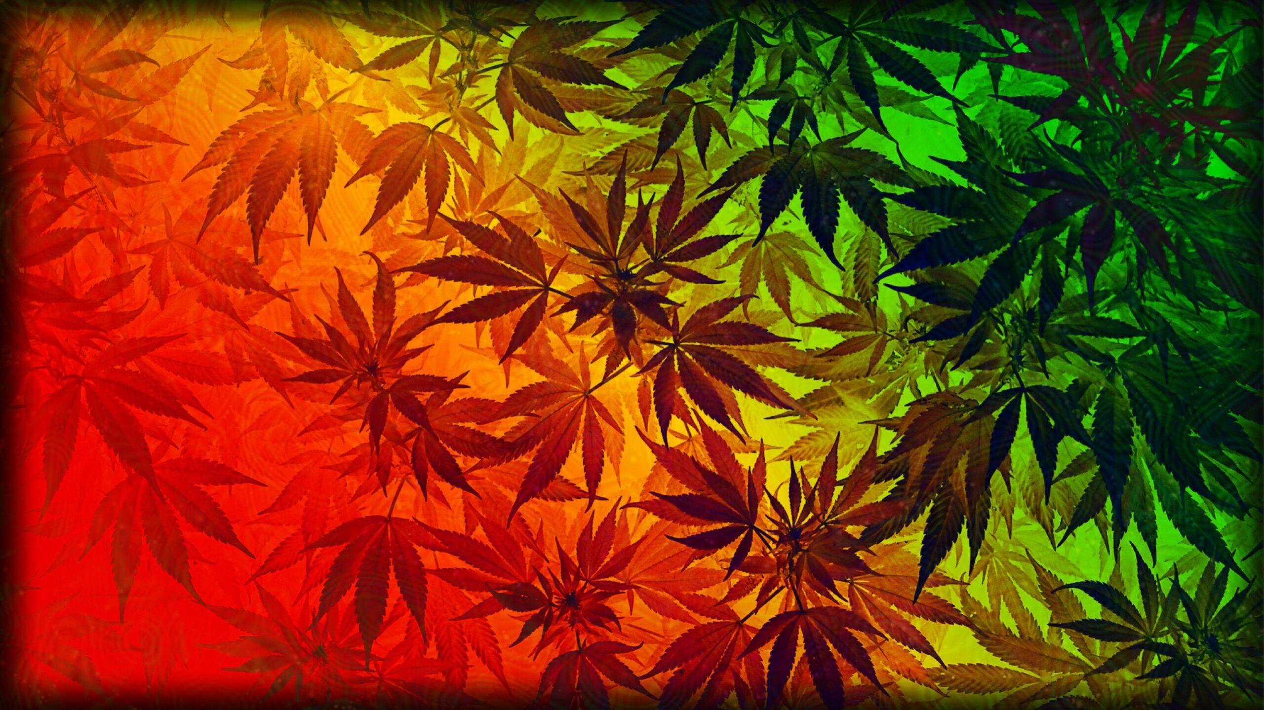 hd weeds wallpaper