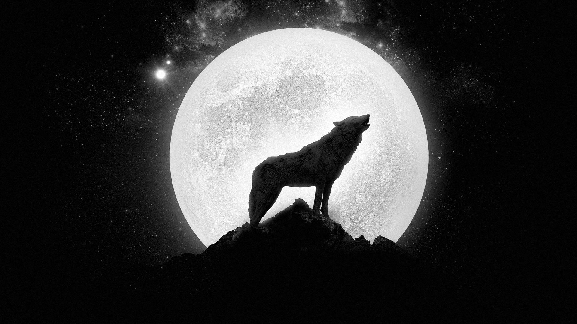 werewolf hd wallpaper