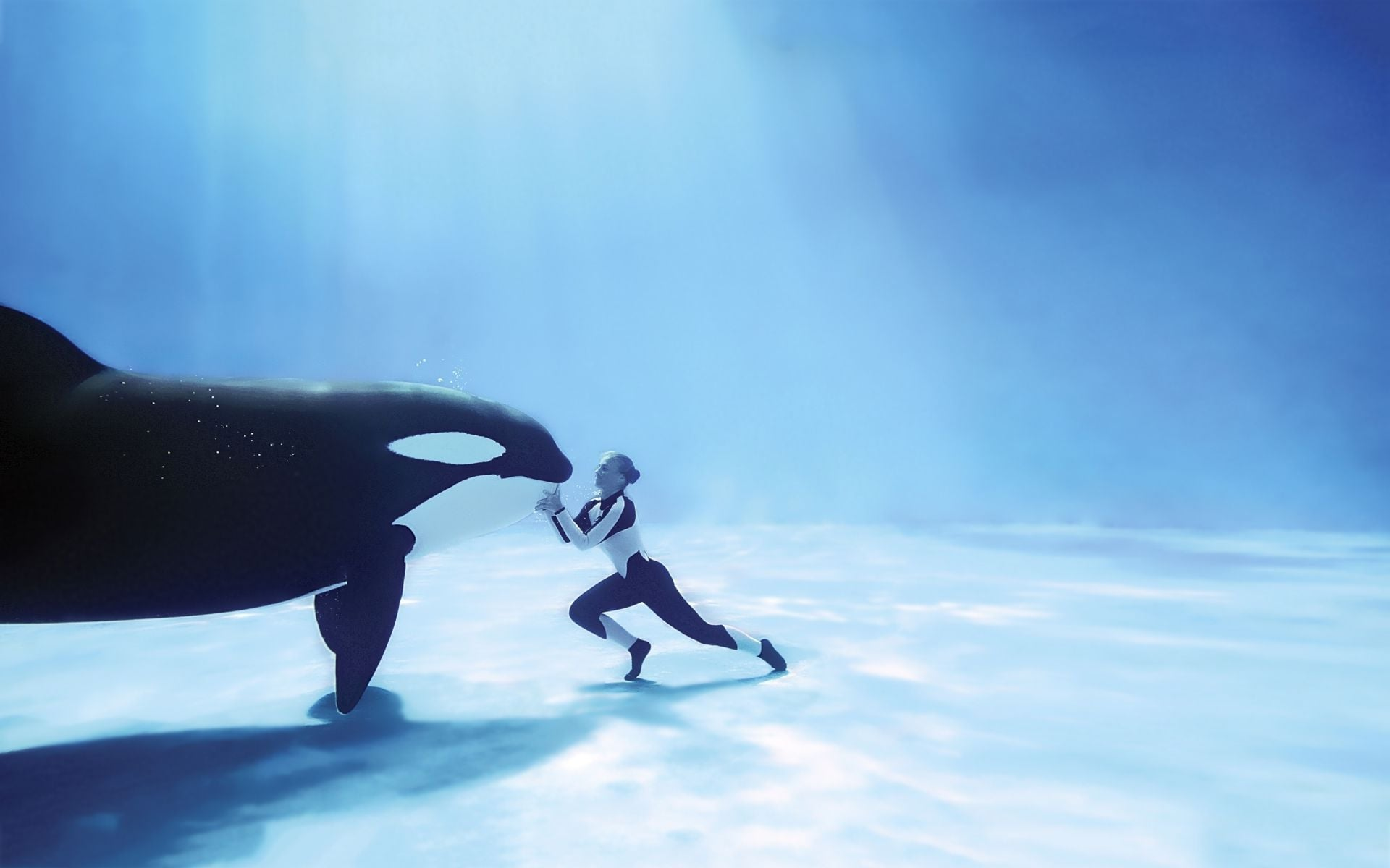 photos of whale
