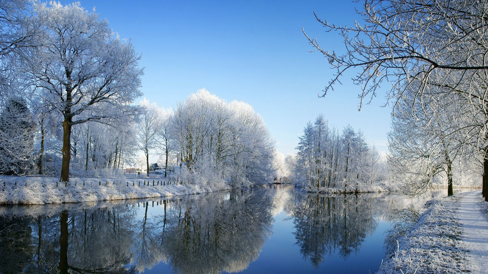hd winter scene